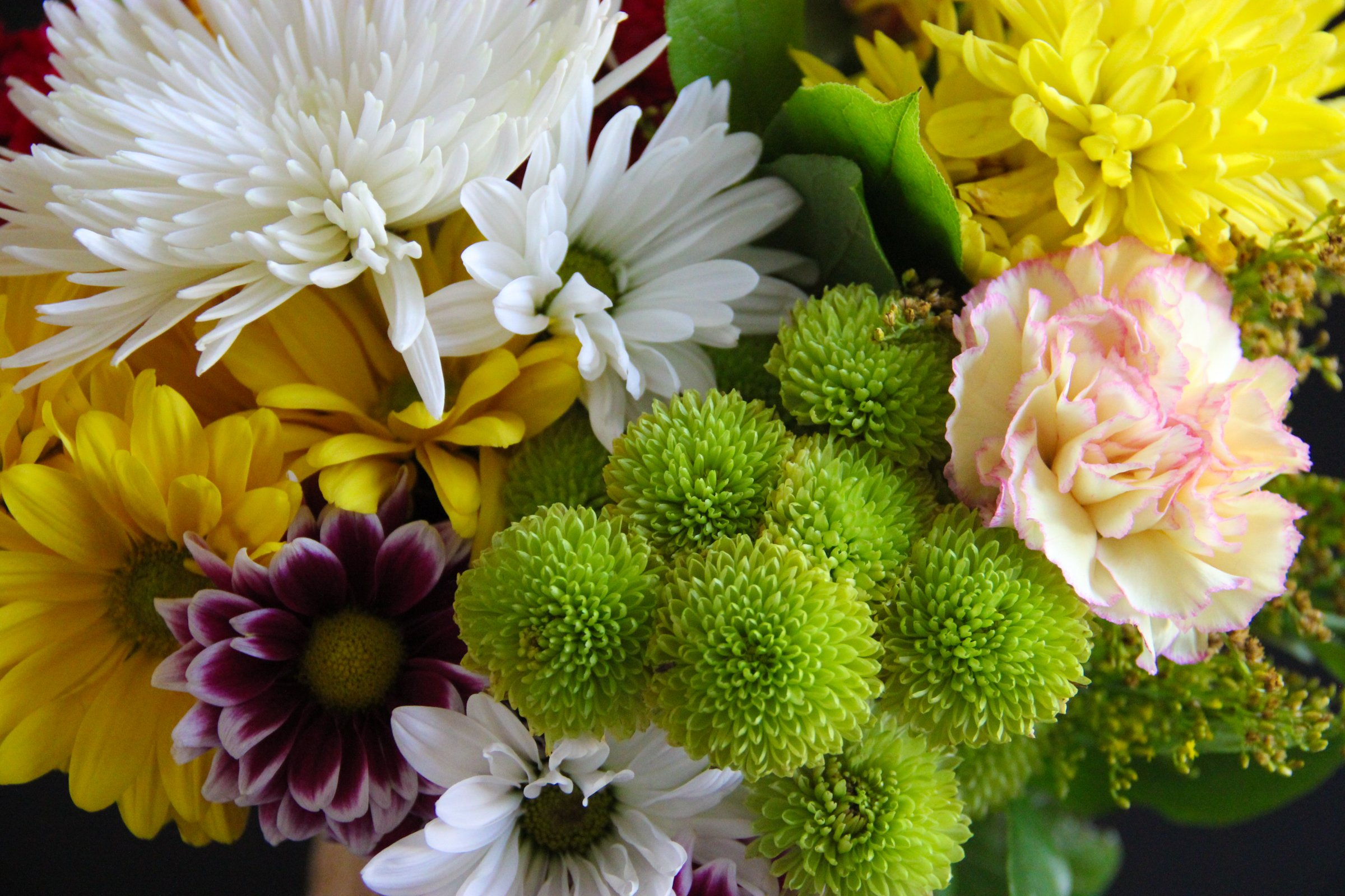 Free Stock Photo Of Bouquet Of White Yellow Green Flowers