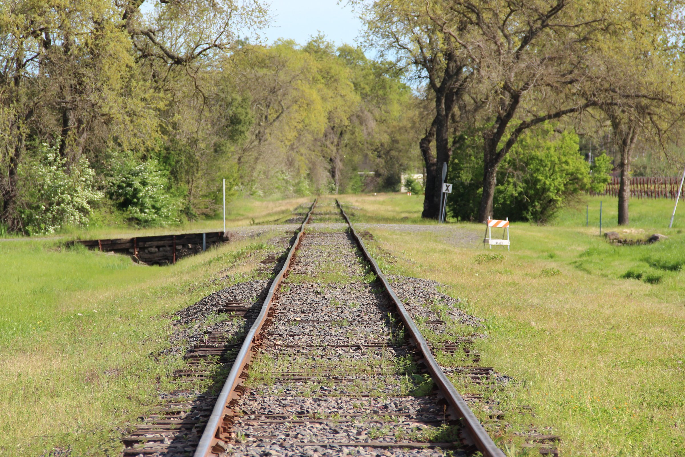 Railroad Tracks on Grass by Trees