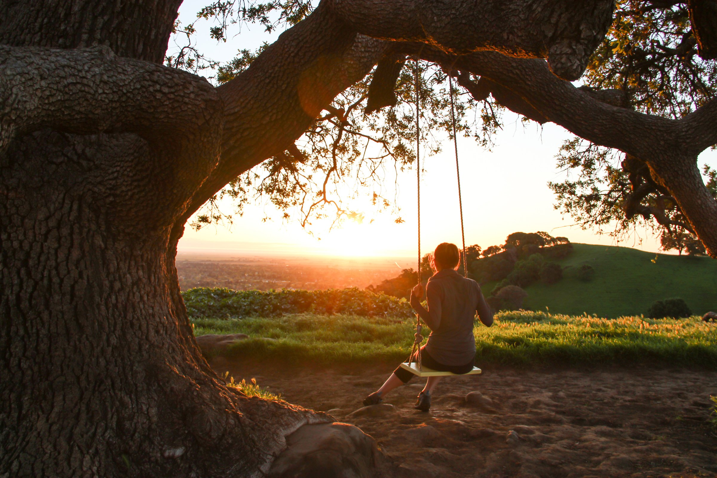Girl on Swing Under Tree Watching Sunrise