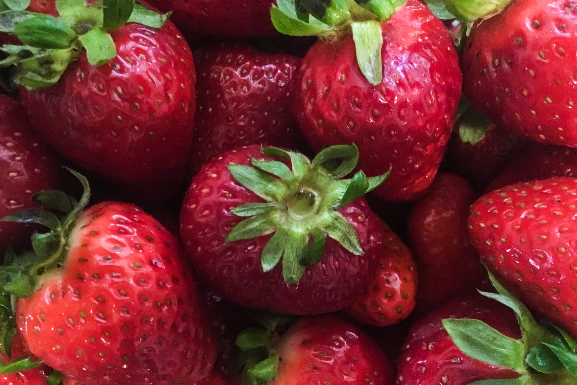Close Up of Red Strawberries