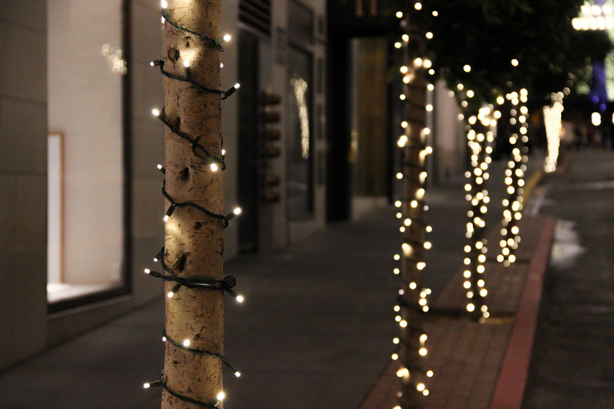 Christmas Lights For Tree Trunks Decoratingspecial Com