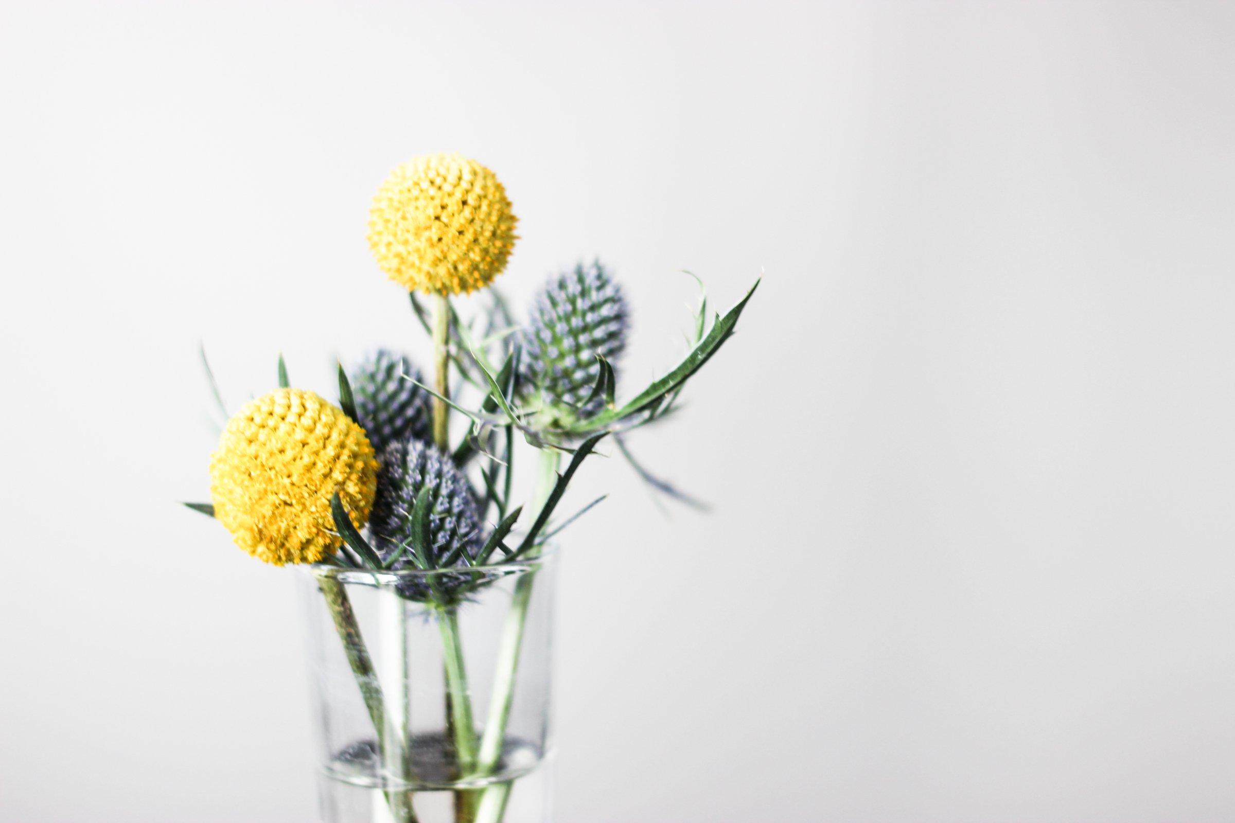 Exotic Flowers In Vase