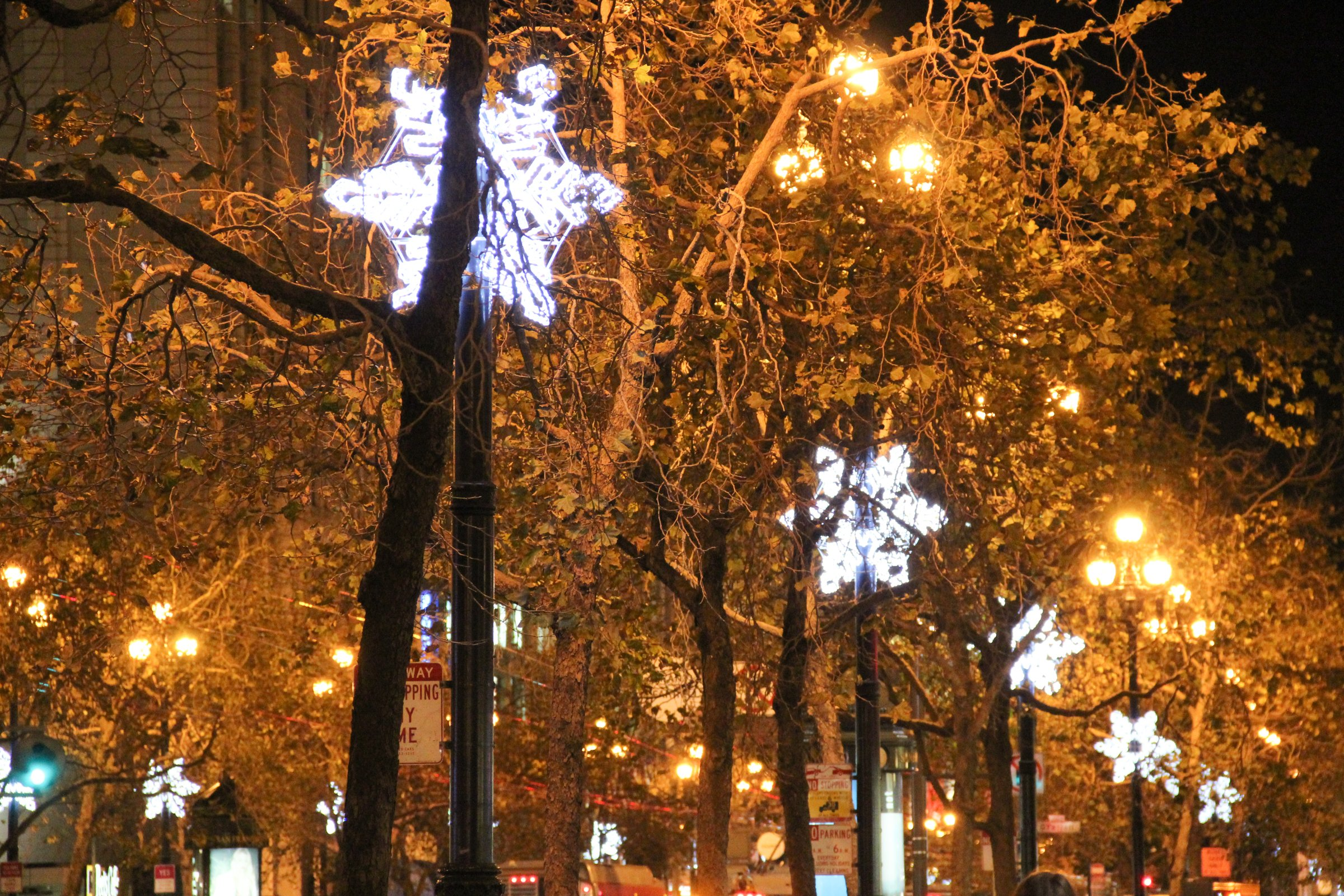 Star Decorations On Streetlights