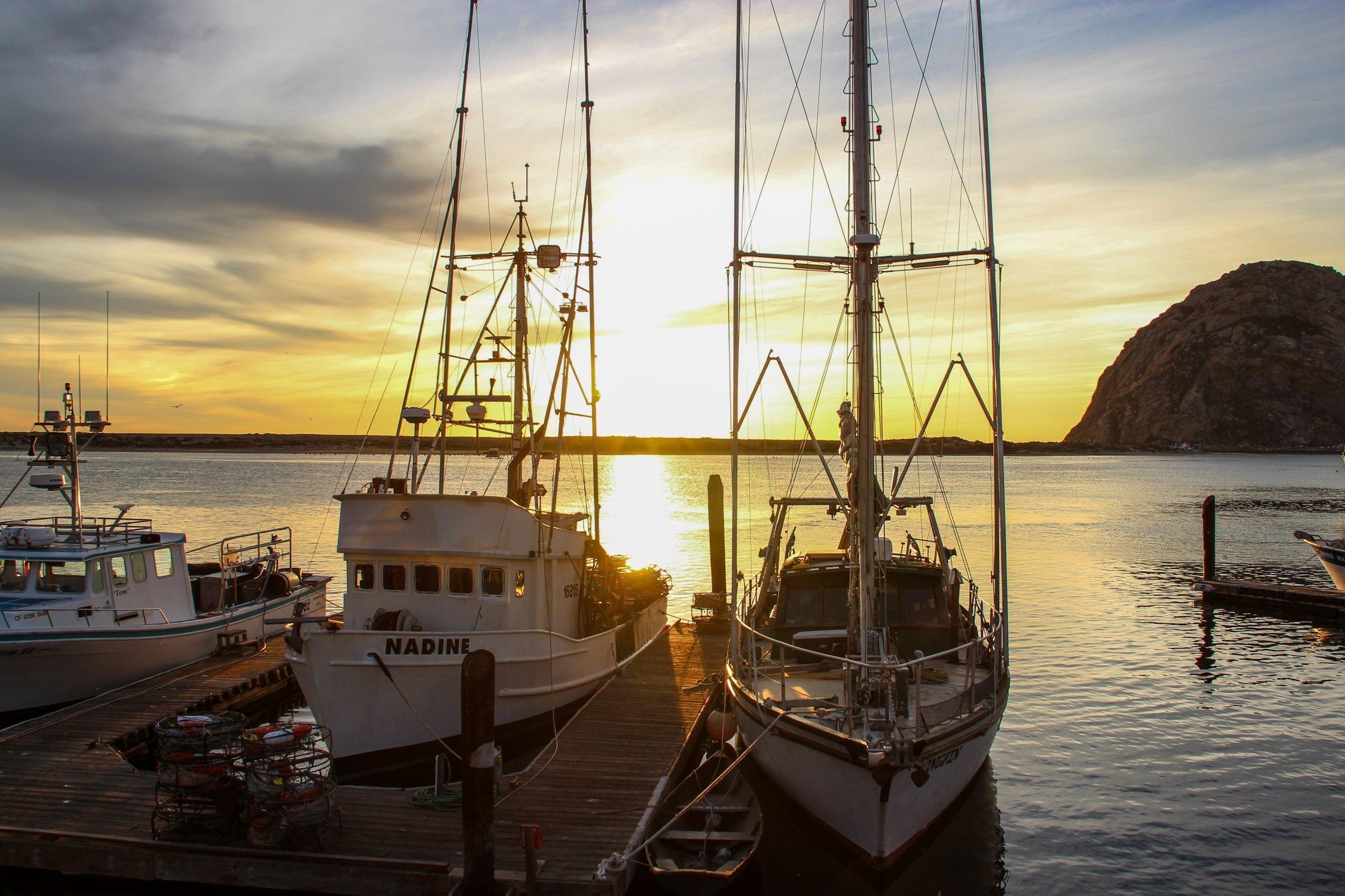 Boats Docked In Morro Bay Harbor