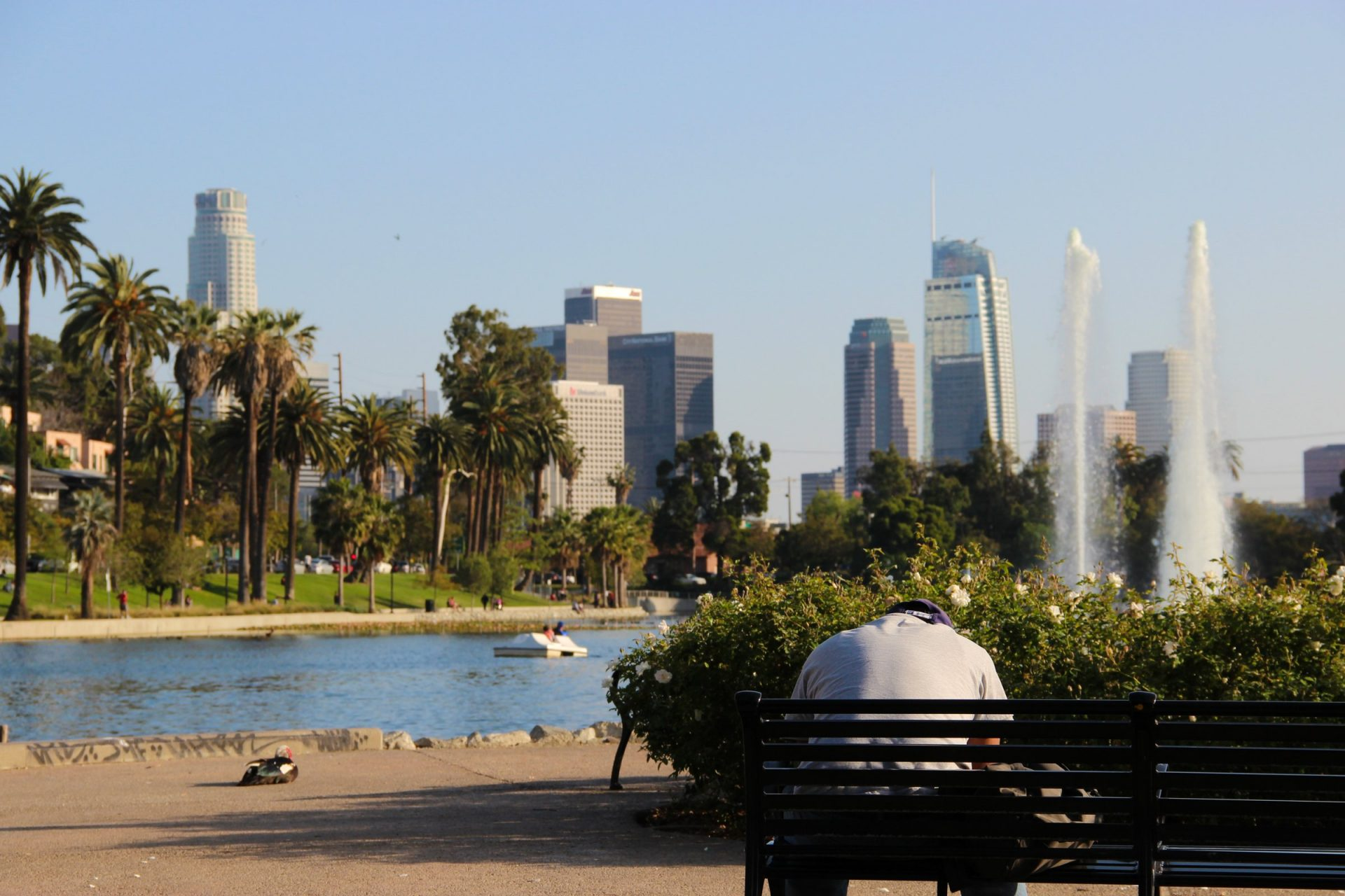 Man On Bench In Downtown Los Angeles Park