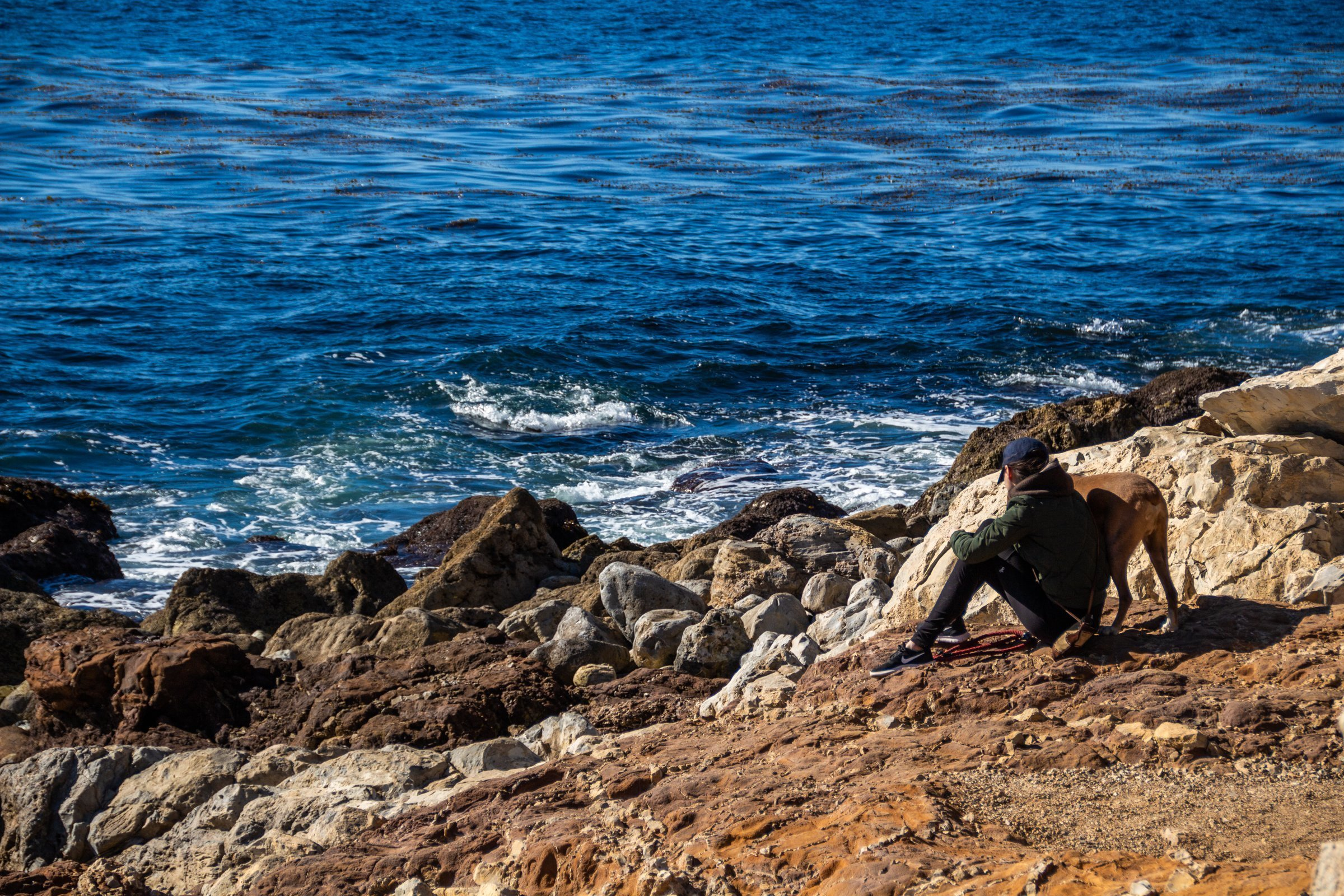 Woman And Dog On Rocky Shore