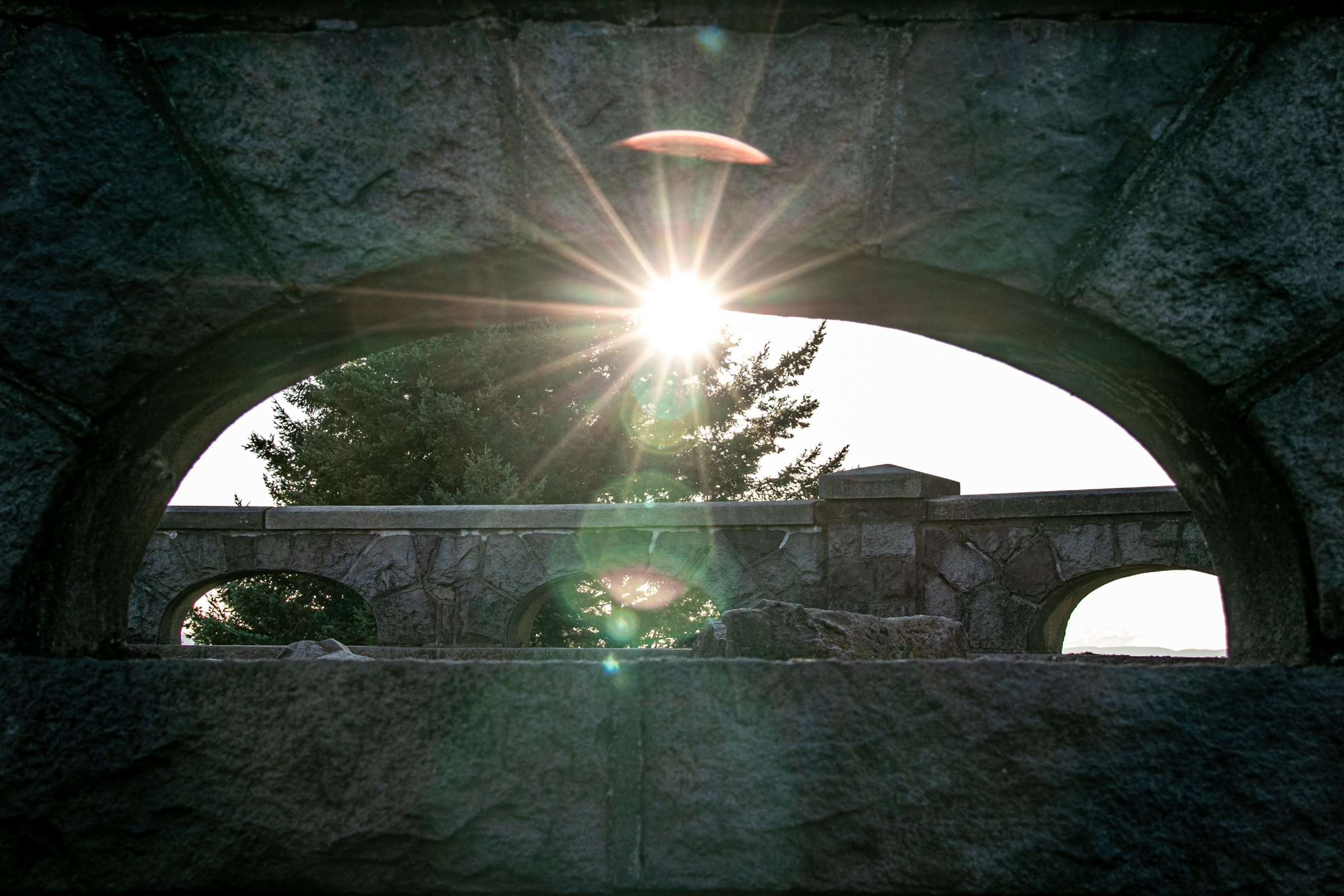 Sunlight Beams Through Tree And Stone Arch