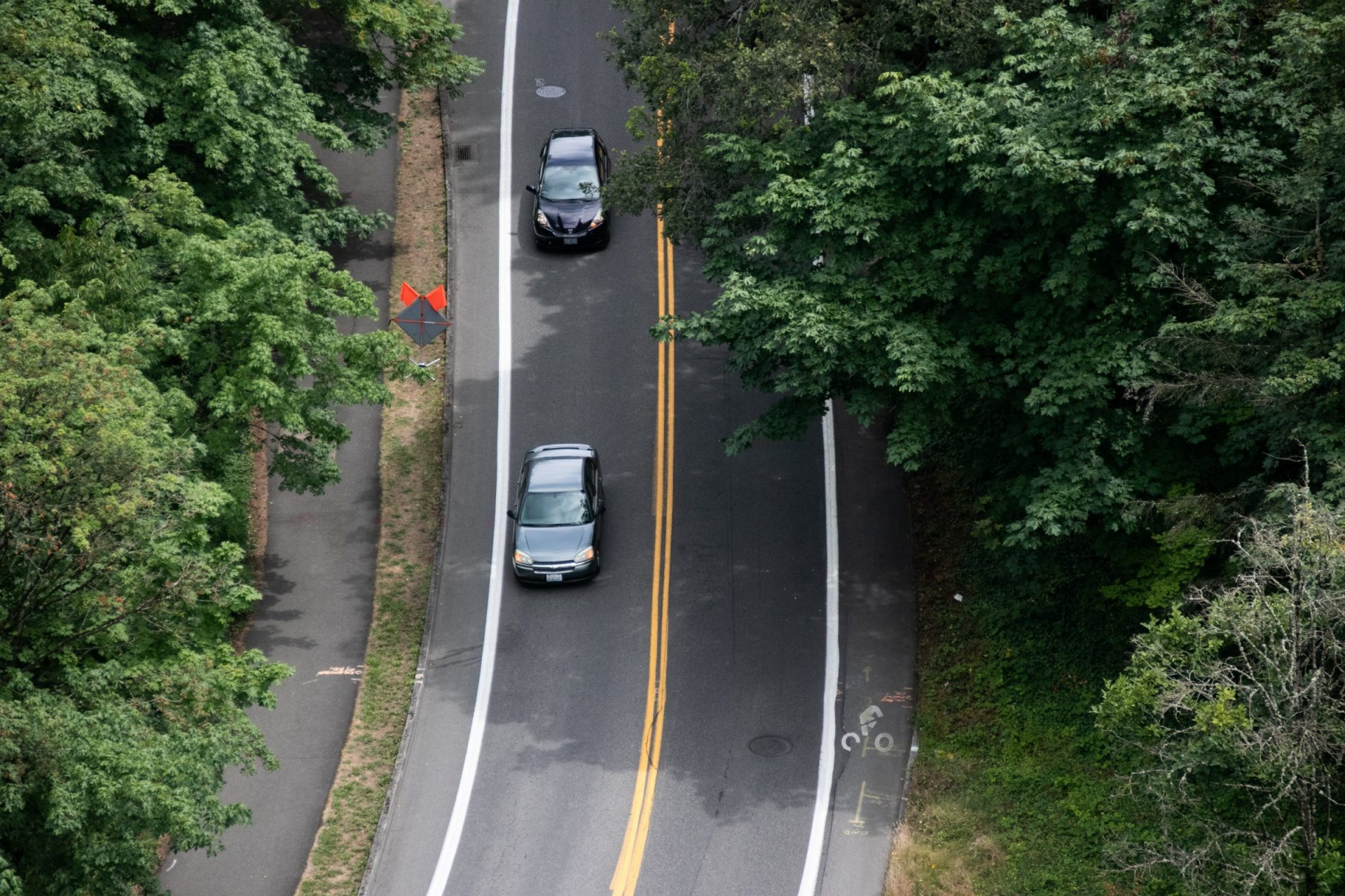 Two Cars In Road Between Trees