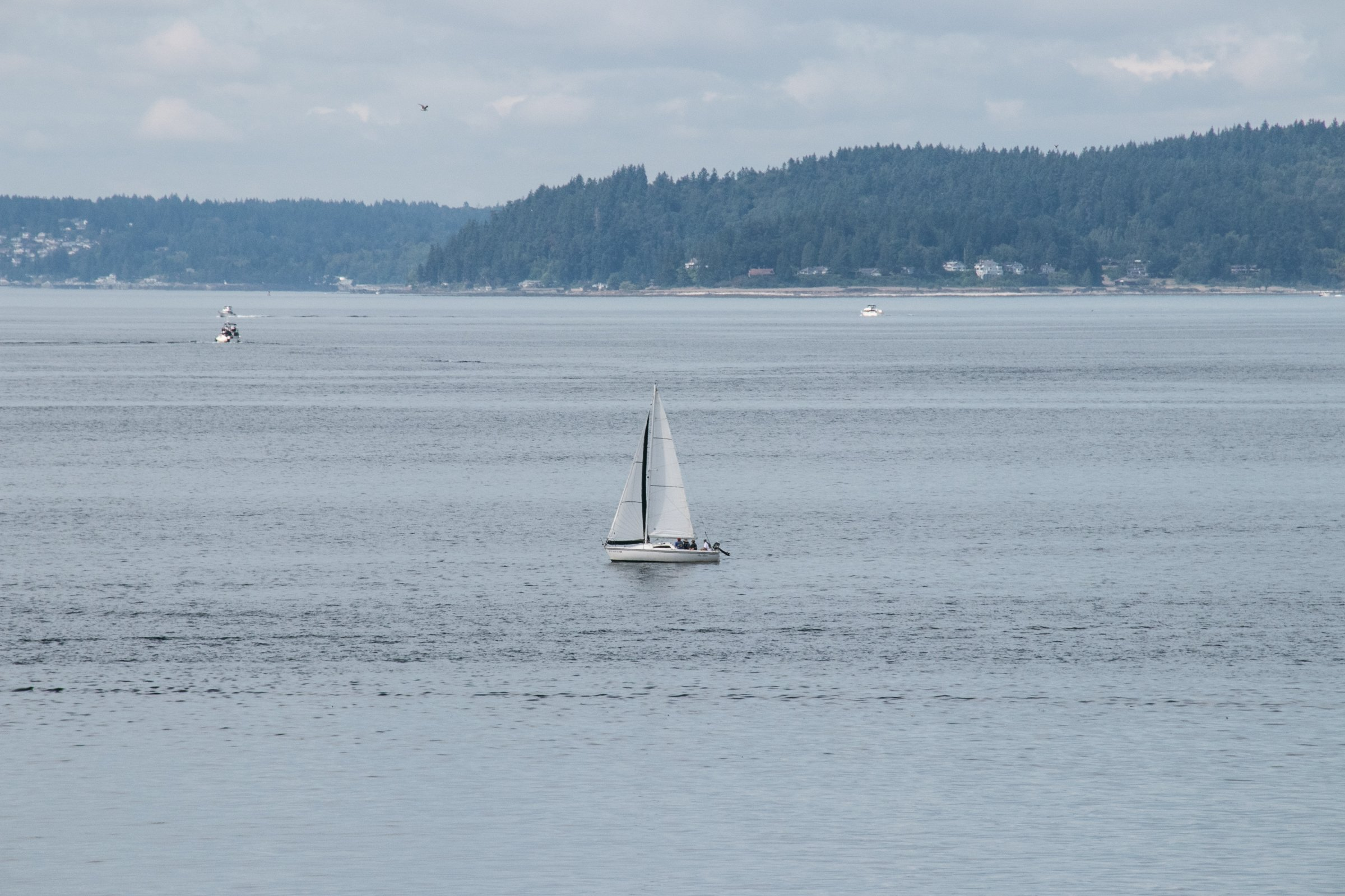 Sailboat On Water Near Coast