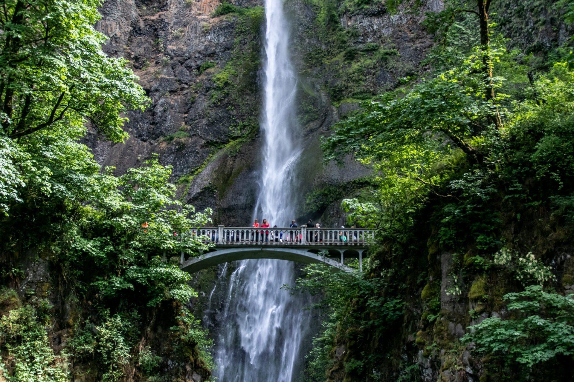 Waterfall Behind People On Bridge Between Trees