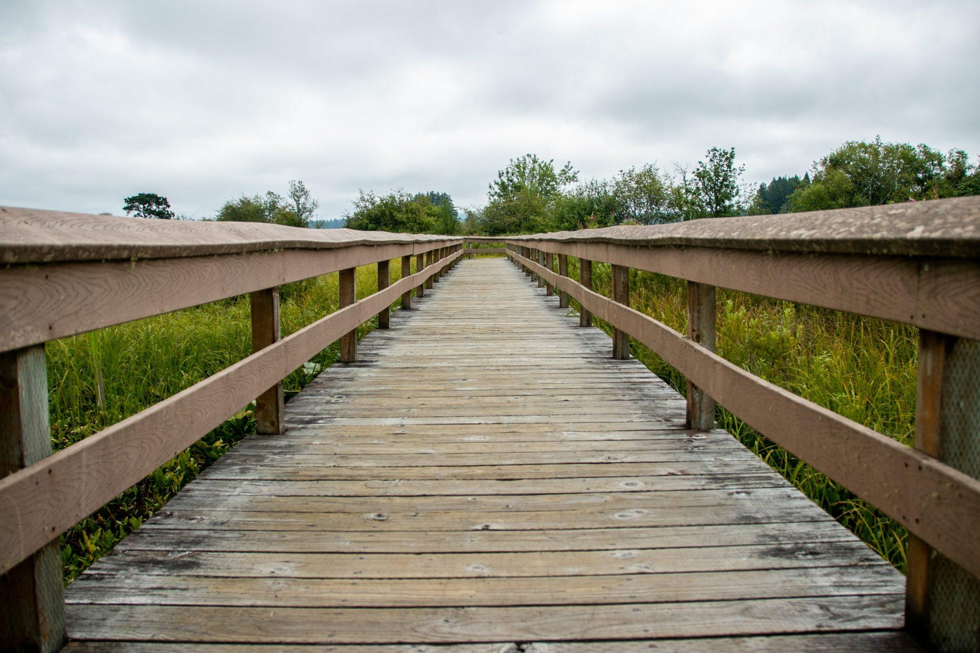 Boardwalk With Railings In Meadow