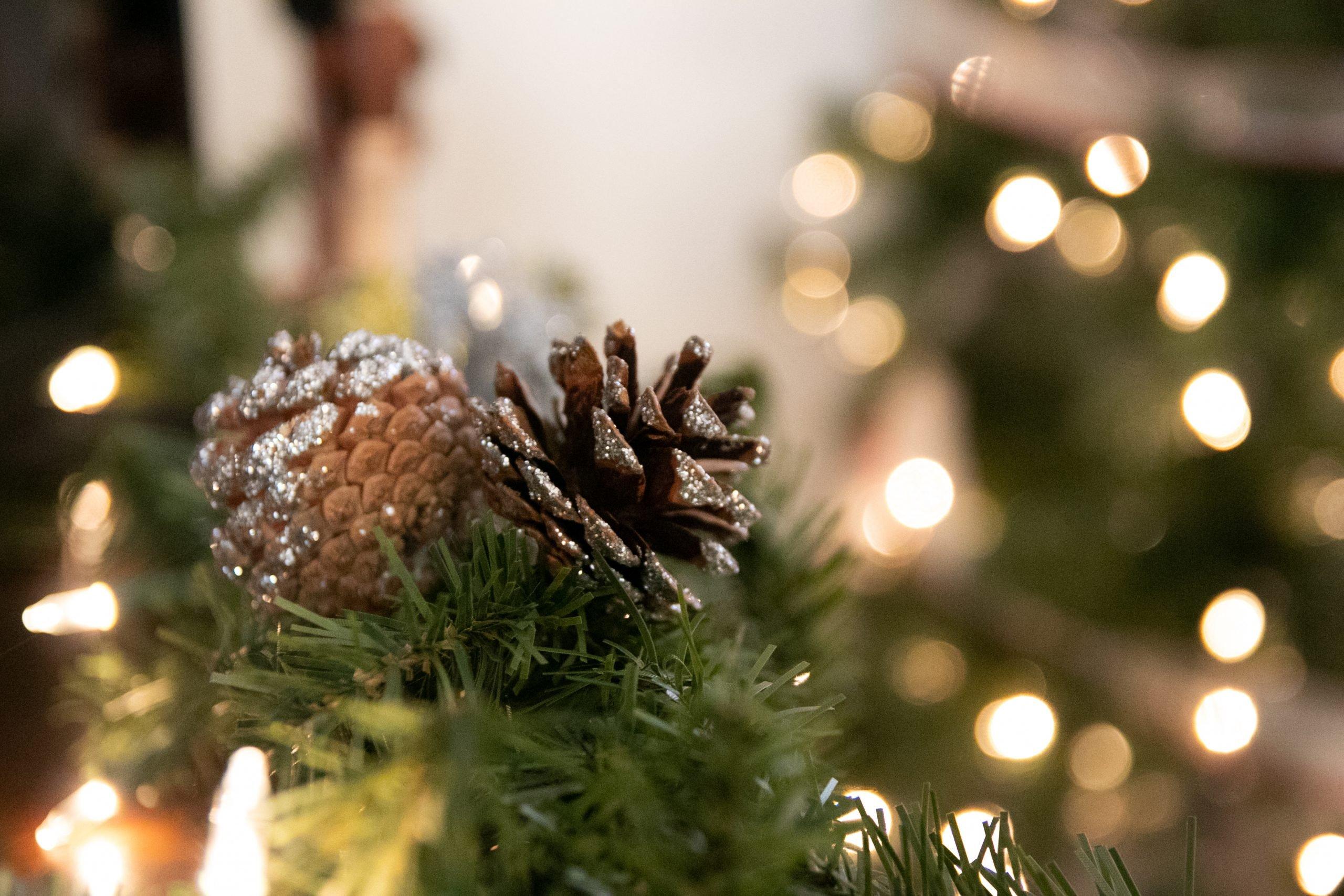 Pine Cone Decoration On Lit Tree