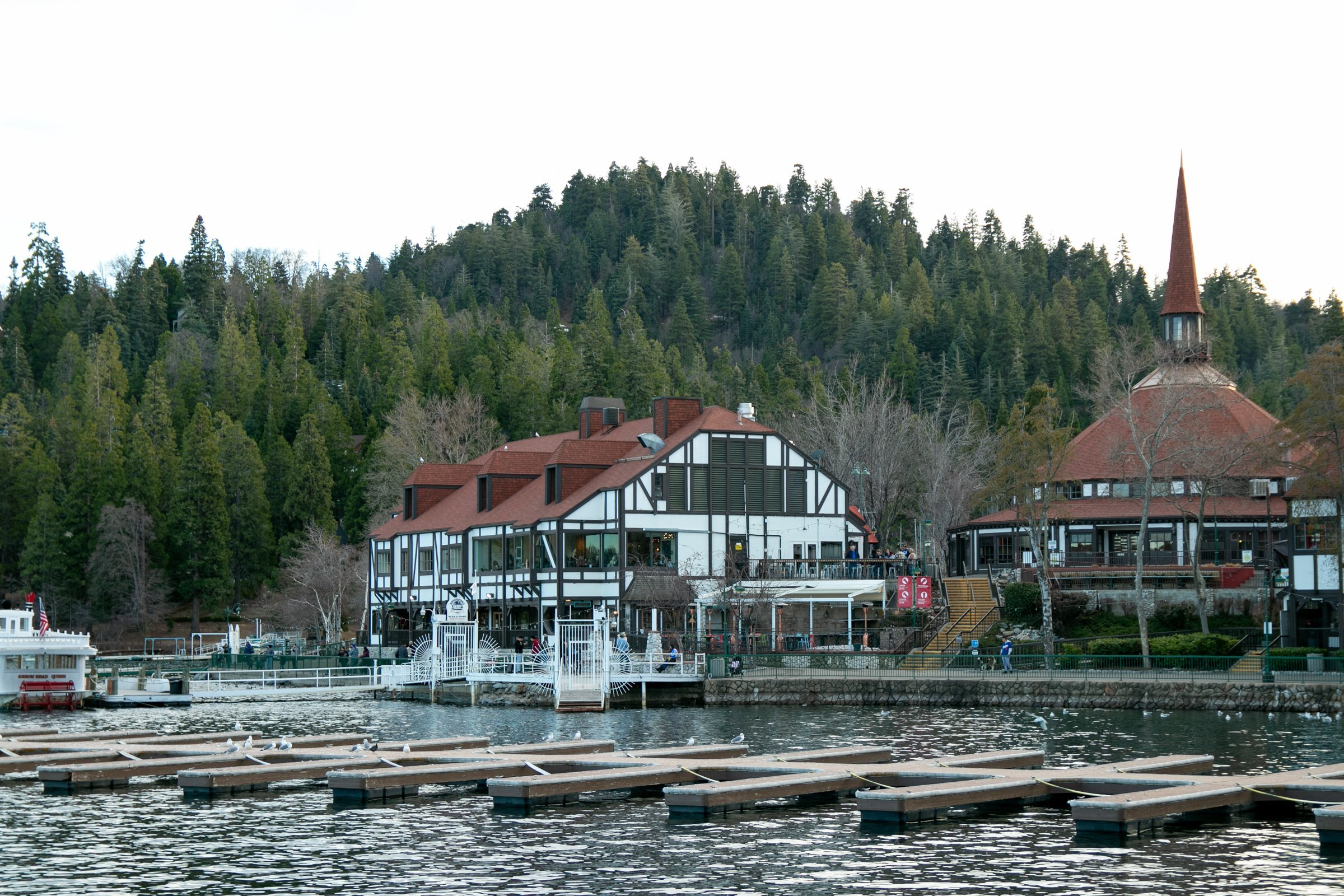 Forest And Buildings On Shore