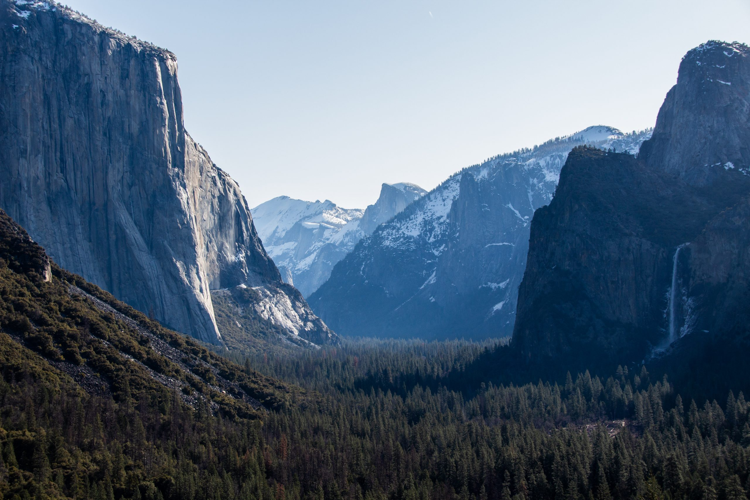 Massive Mountains Near Forest In Yosemite Park