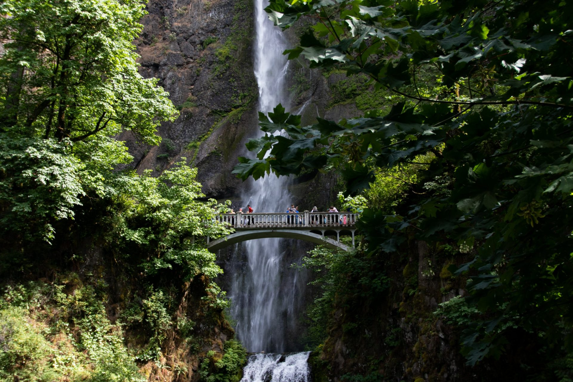 Mountain Waterfall Behind Arch Bridge In Forest