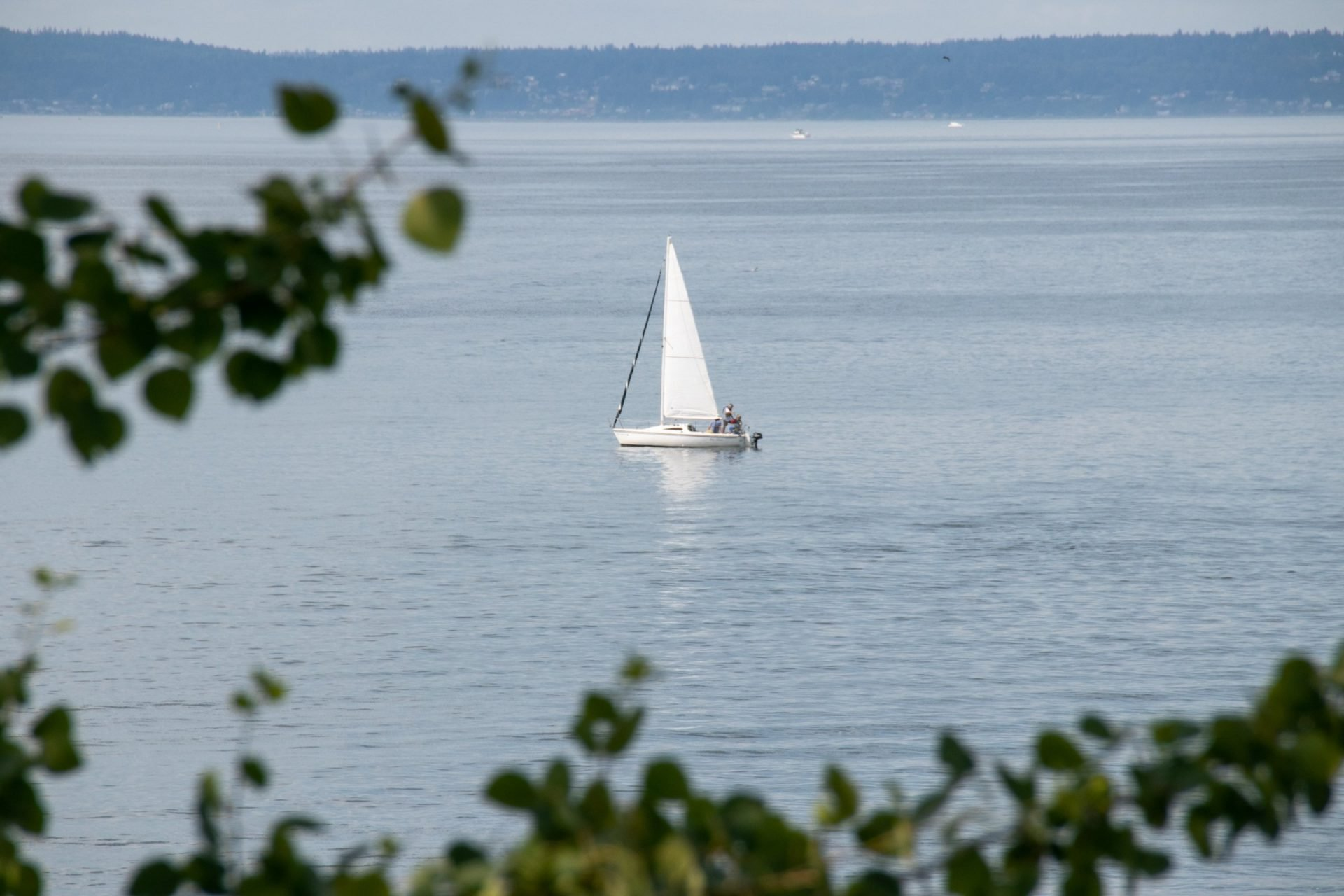 Small Sailboat On Water Near Shore