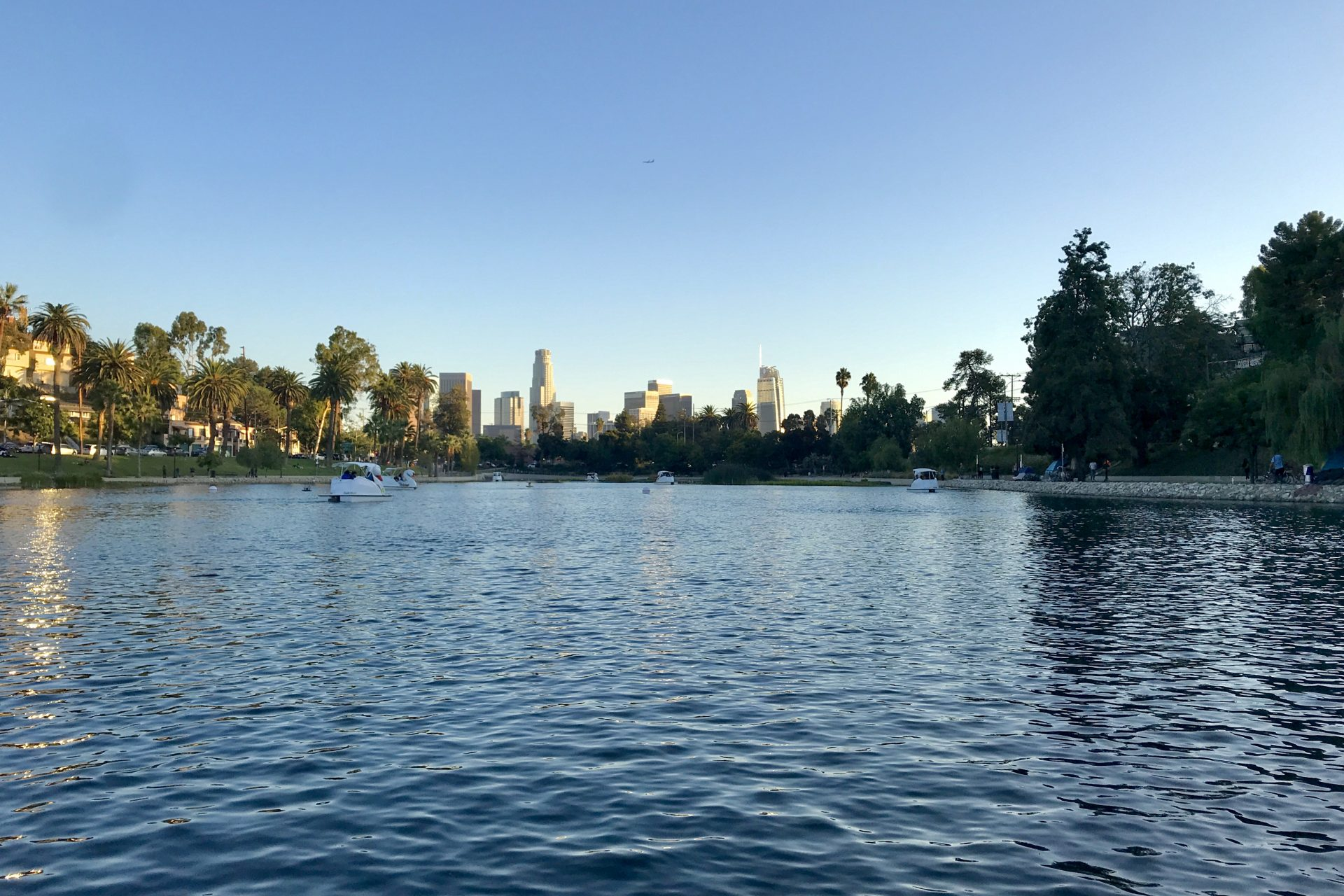 Los Angeles Skyline Behind Paddle Boats On Echo Park Lake