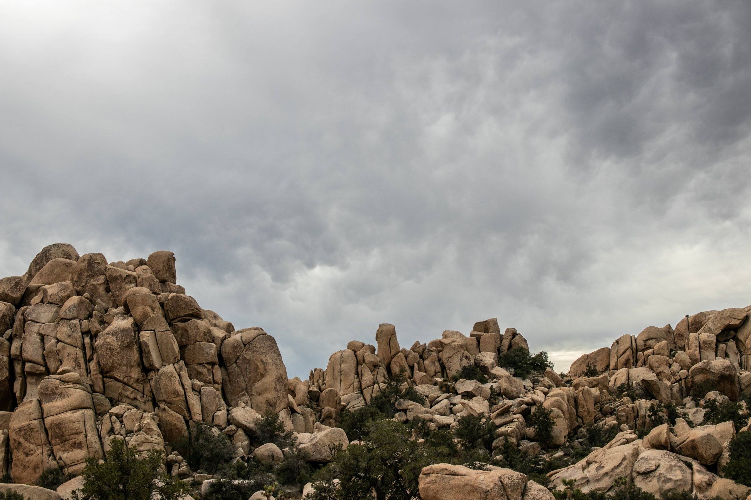 Rock Formations And Plants Against Cloudy Sky