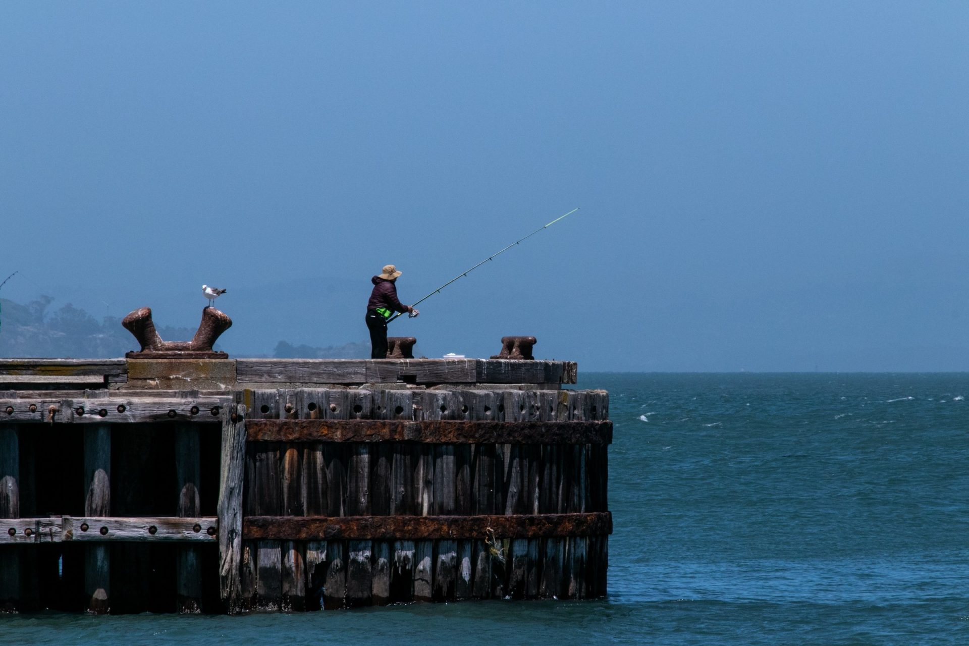 Person Fishing On Wooden Pier