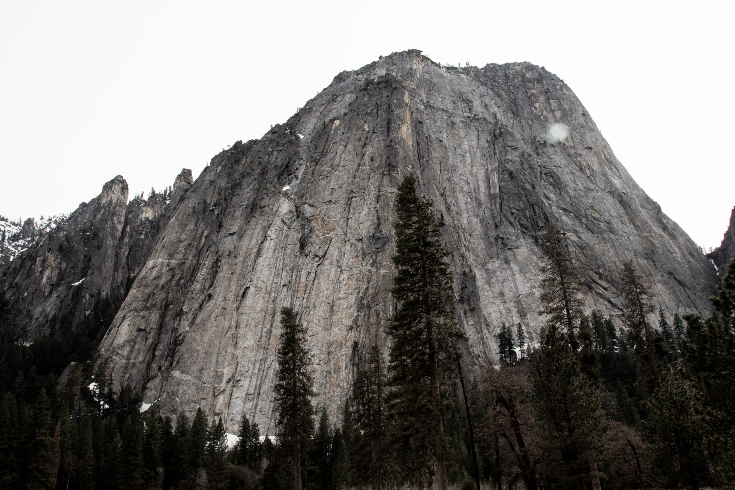 Rock Mountain Behind Coniferous Forest