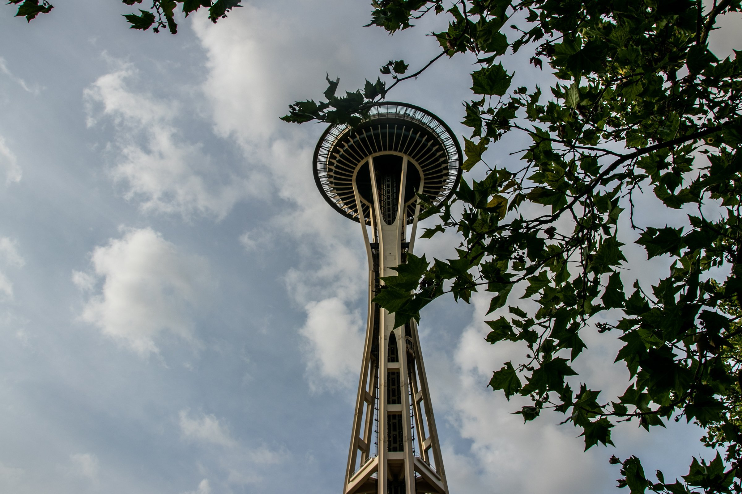 Space Needle Tower Through Tree Leaves
