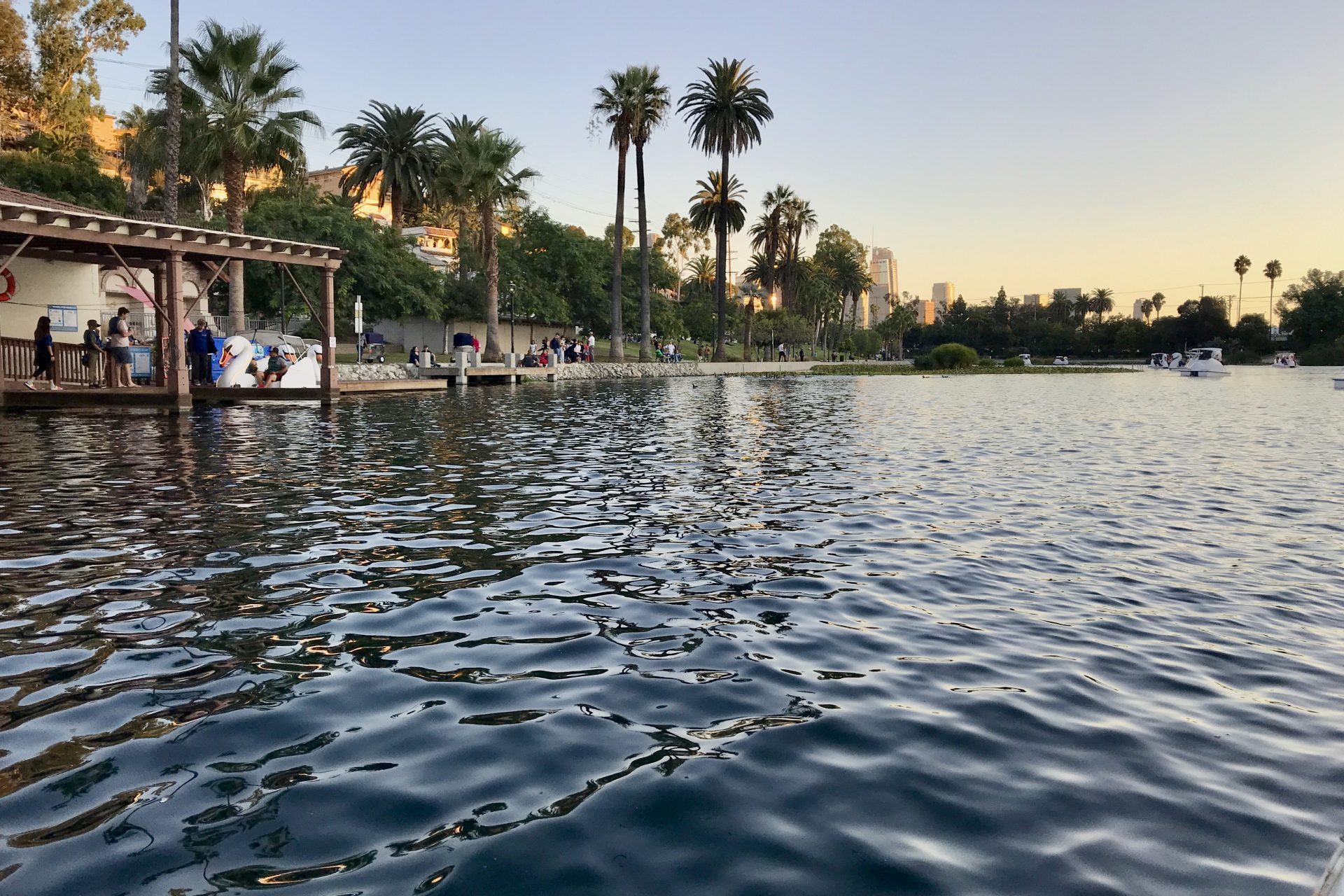 Water In Echo Park Lake