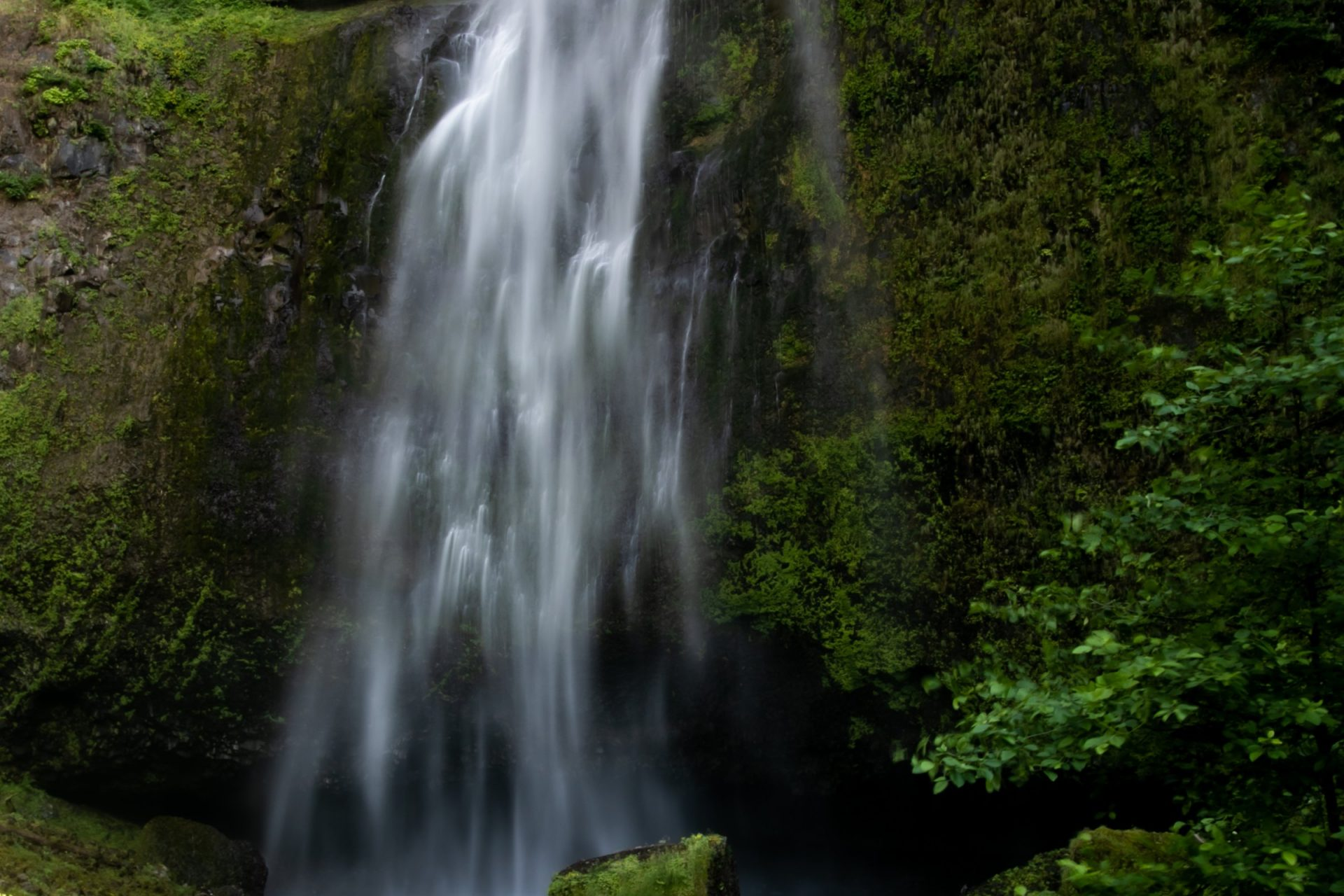 Small Misty Waterfall On Mossy Cliff