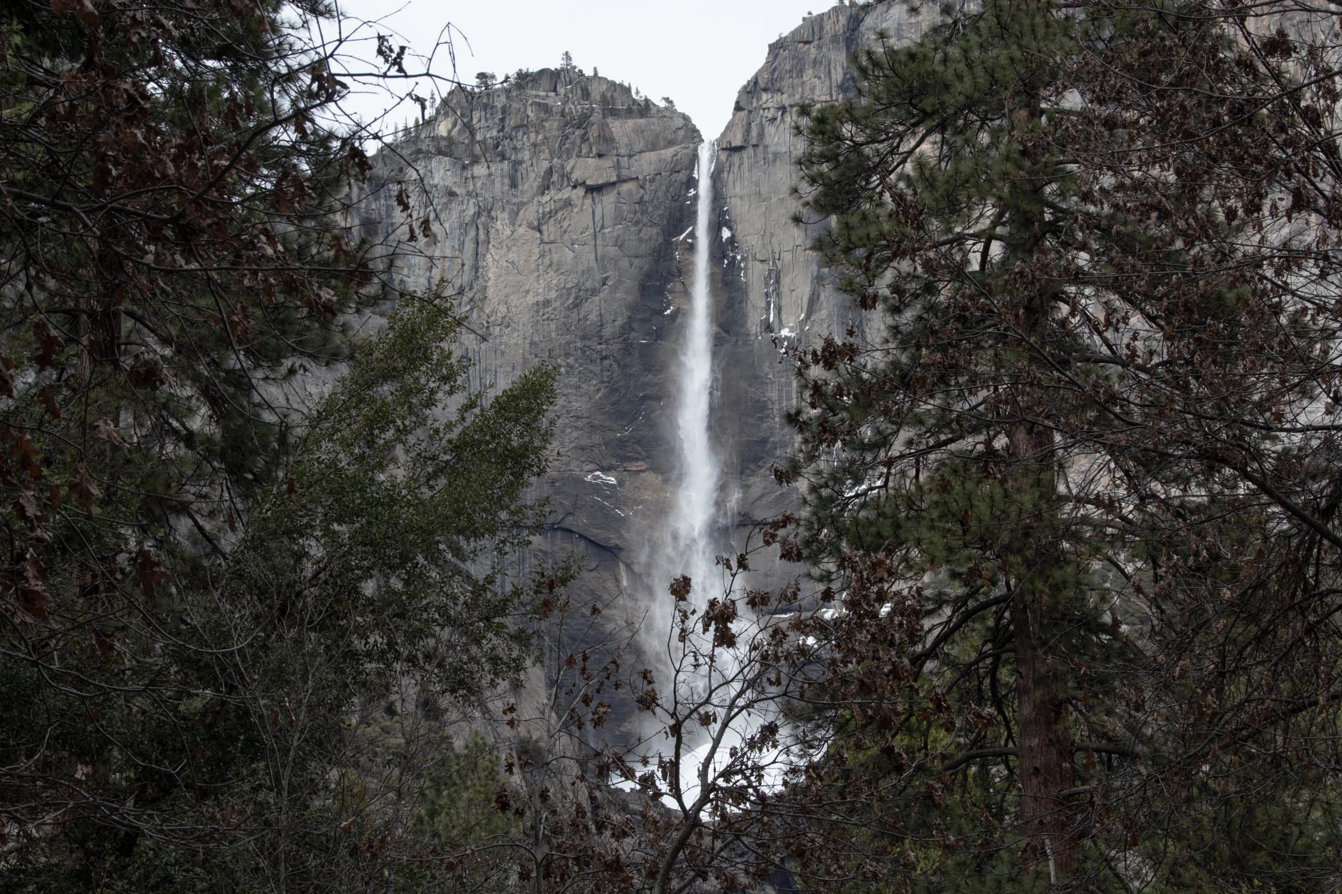 Narrow Cliff Waterfall Behind Trees