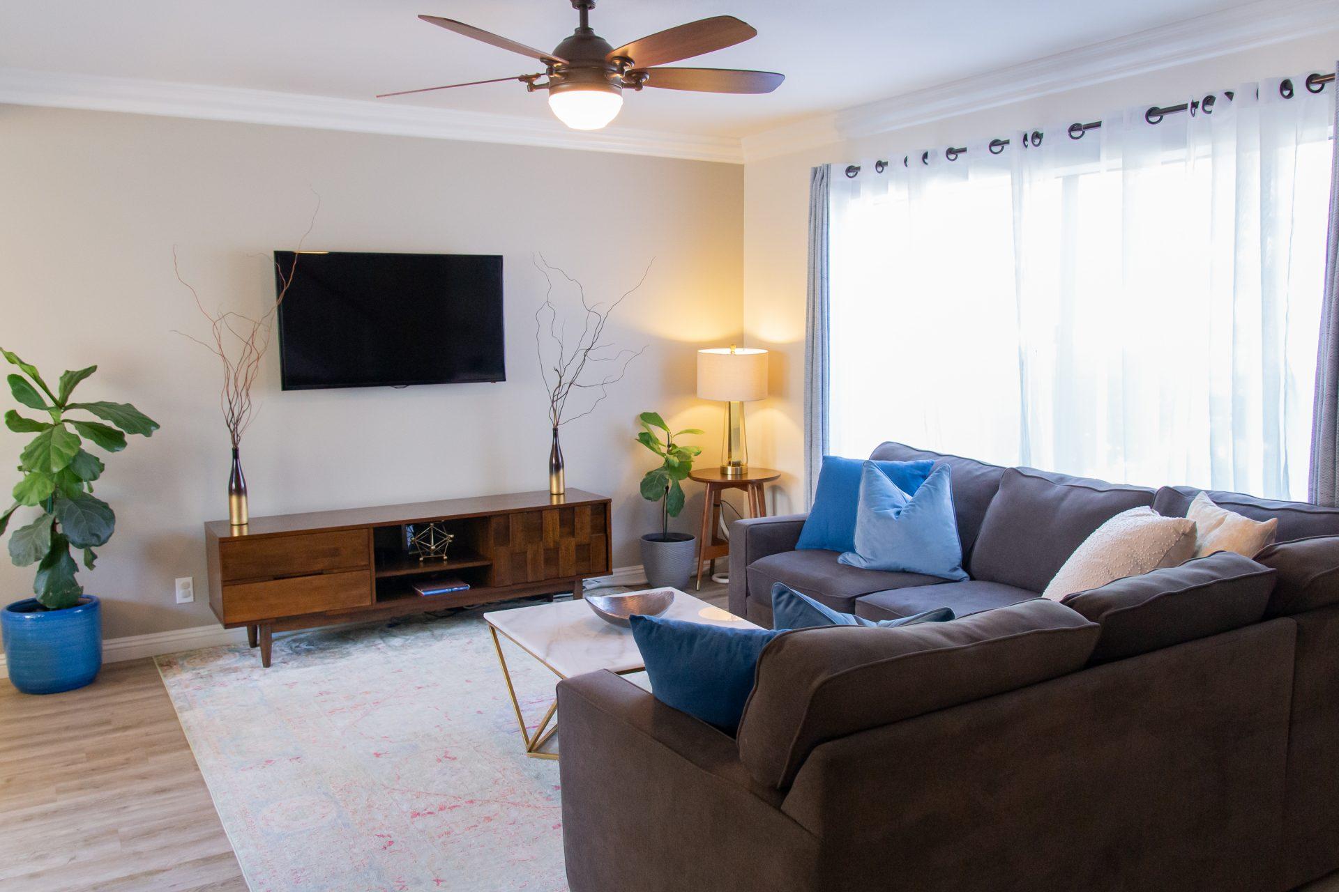Sunlit Cozy Living Room