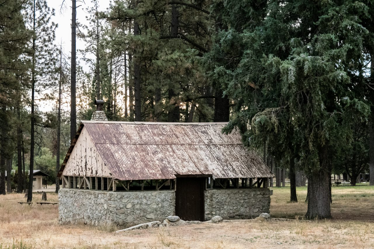 Cabin Between Trees In Forest