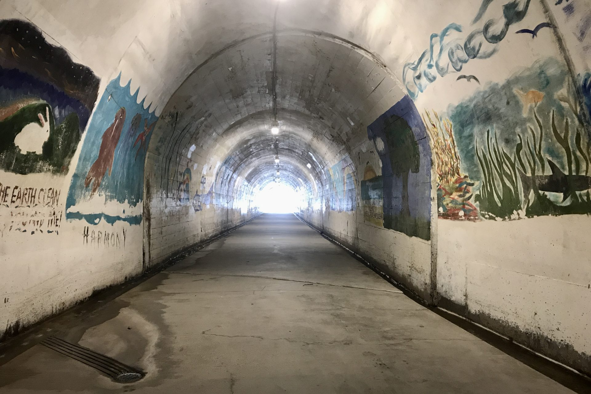 Different Murals In Arch Shaped Tunnel