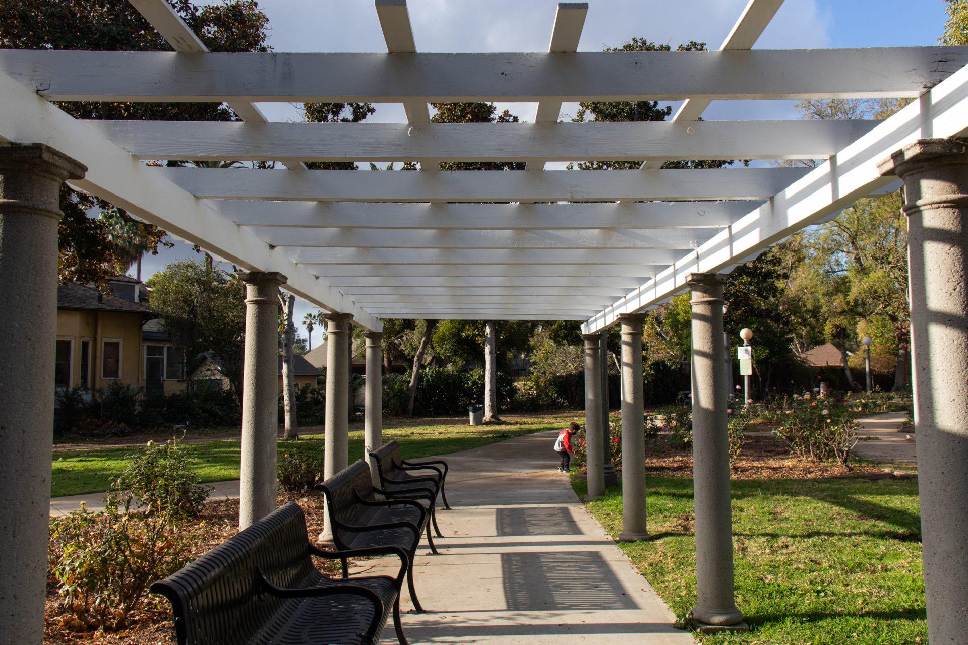 Iron Benches Under Park Pergola