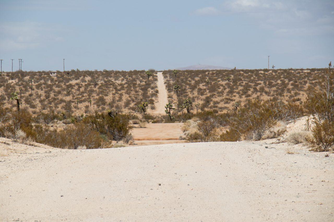 Wide Dirt Path In Desert