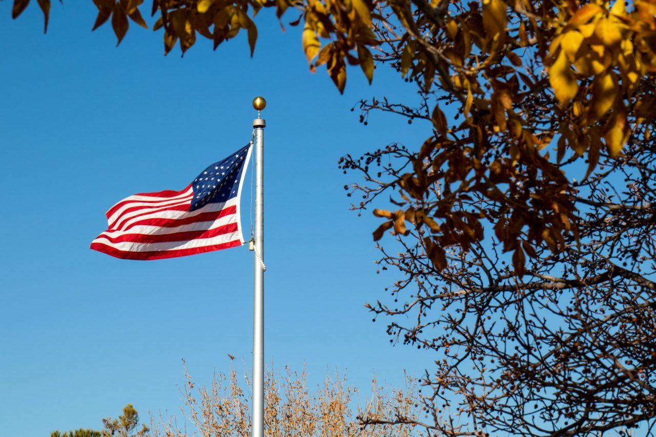 American Flag Near Trees