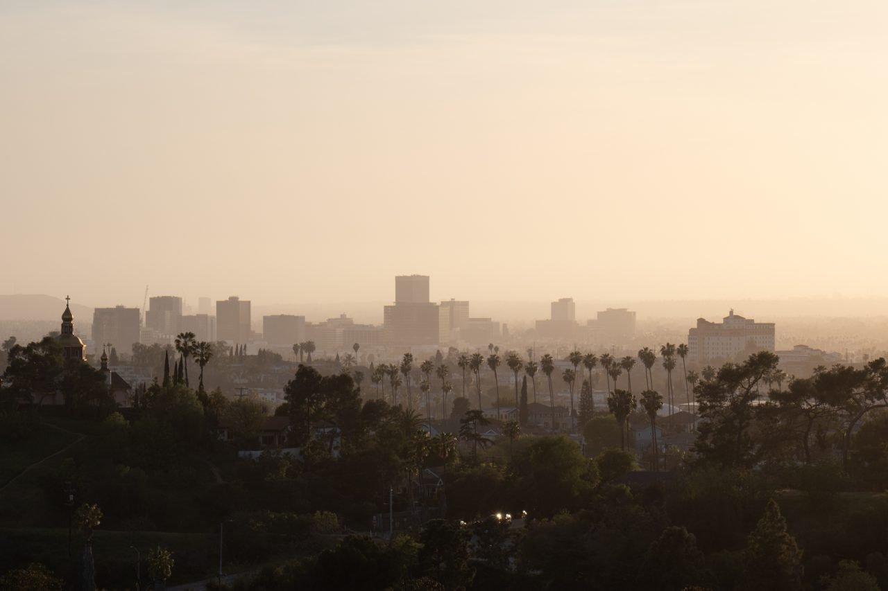 City Skyline Beyond Haze And Trees