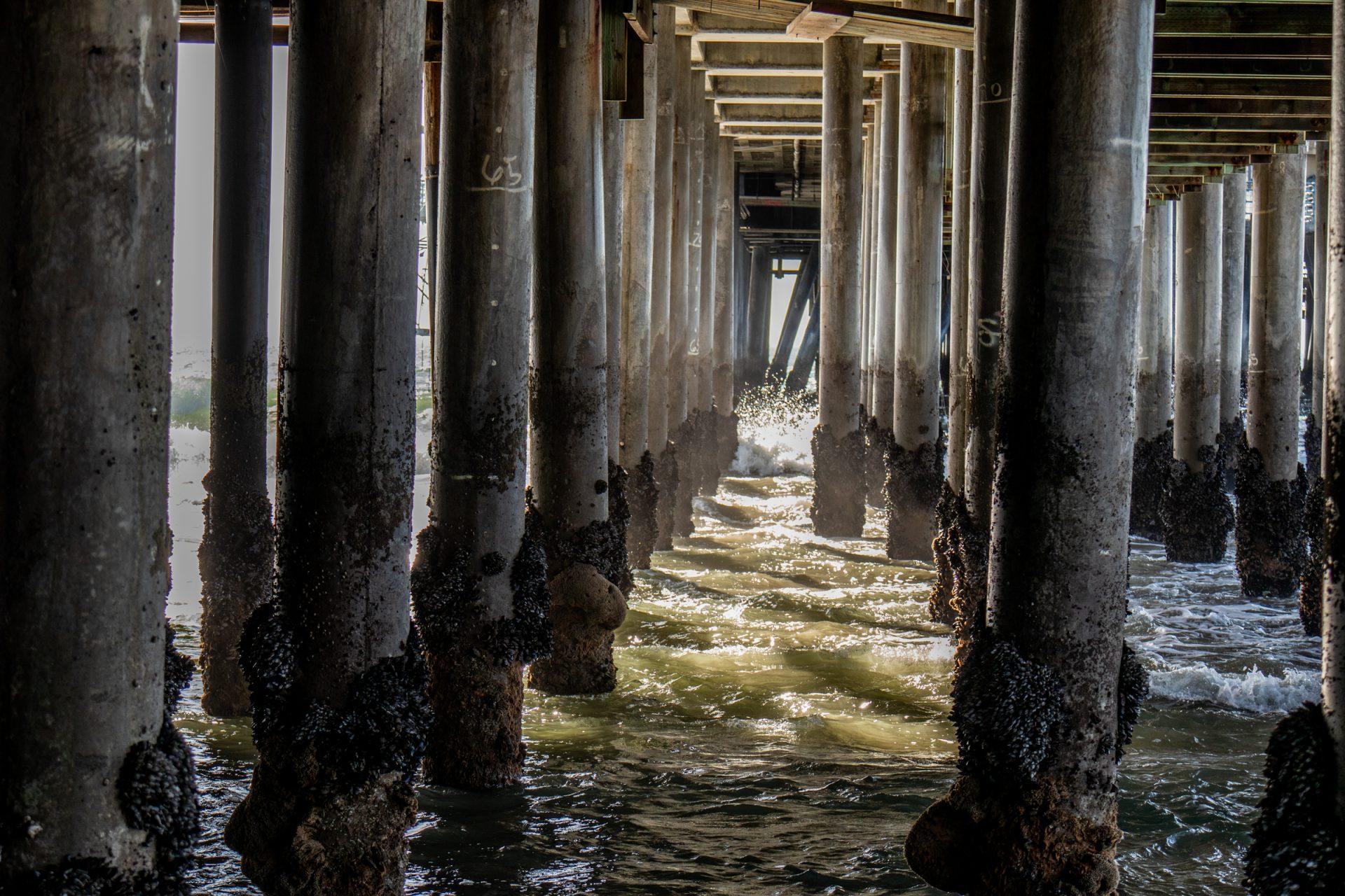 Small Waves Crashing On Barnacles Covered Columns