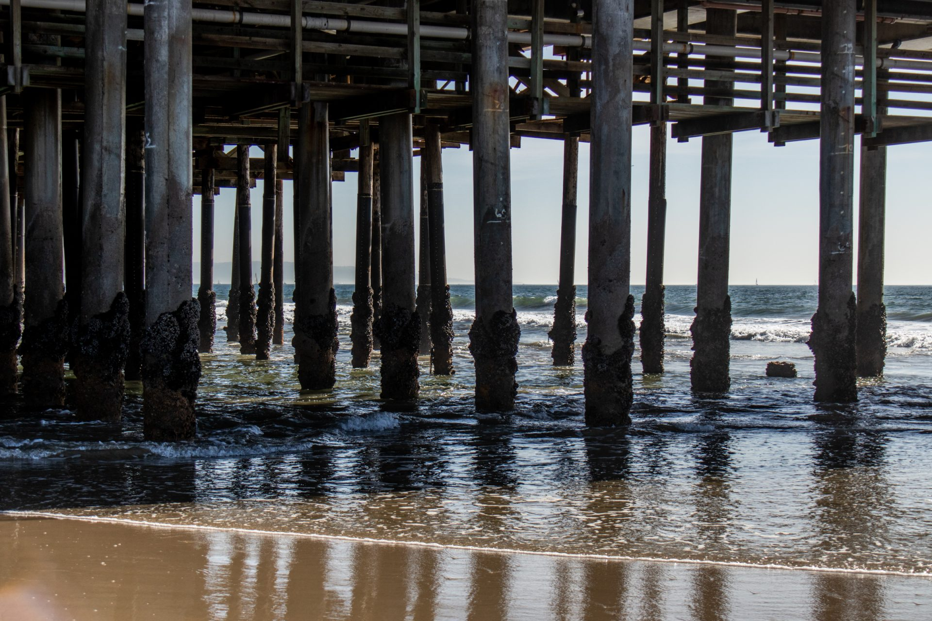 Pier Structure On Barnacle Covered Pilings