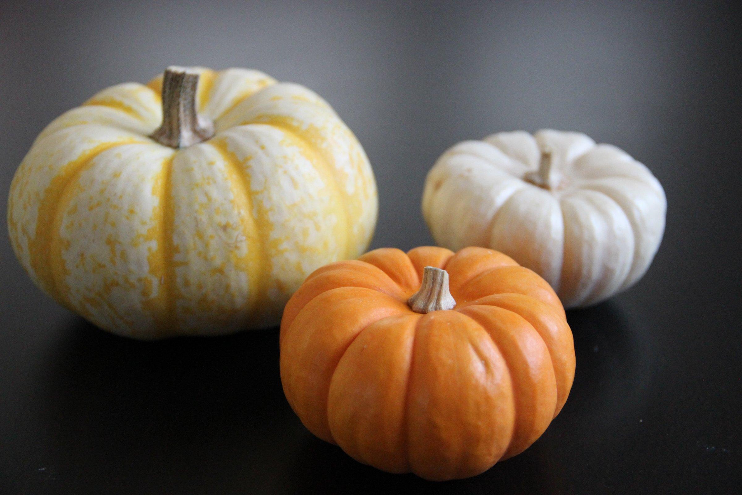 3 Pumpkins on Dark Table