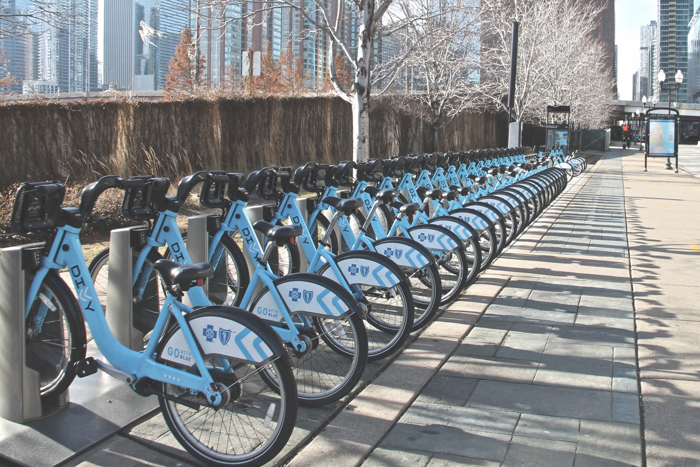 Line of Bicycles for Rent on Rack