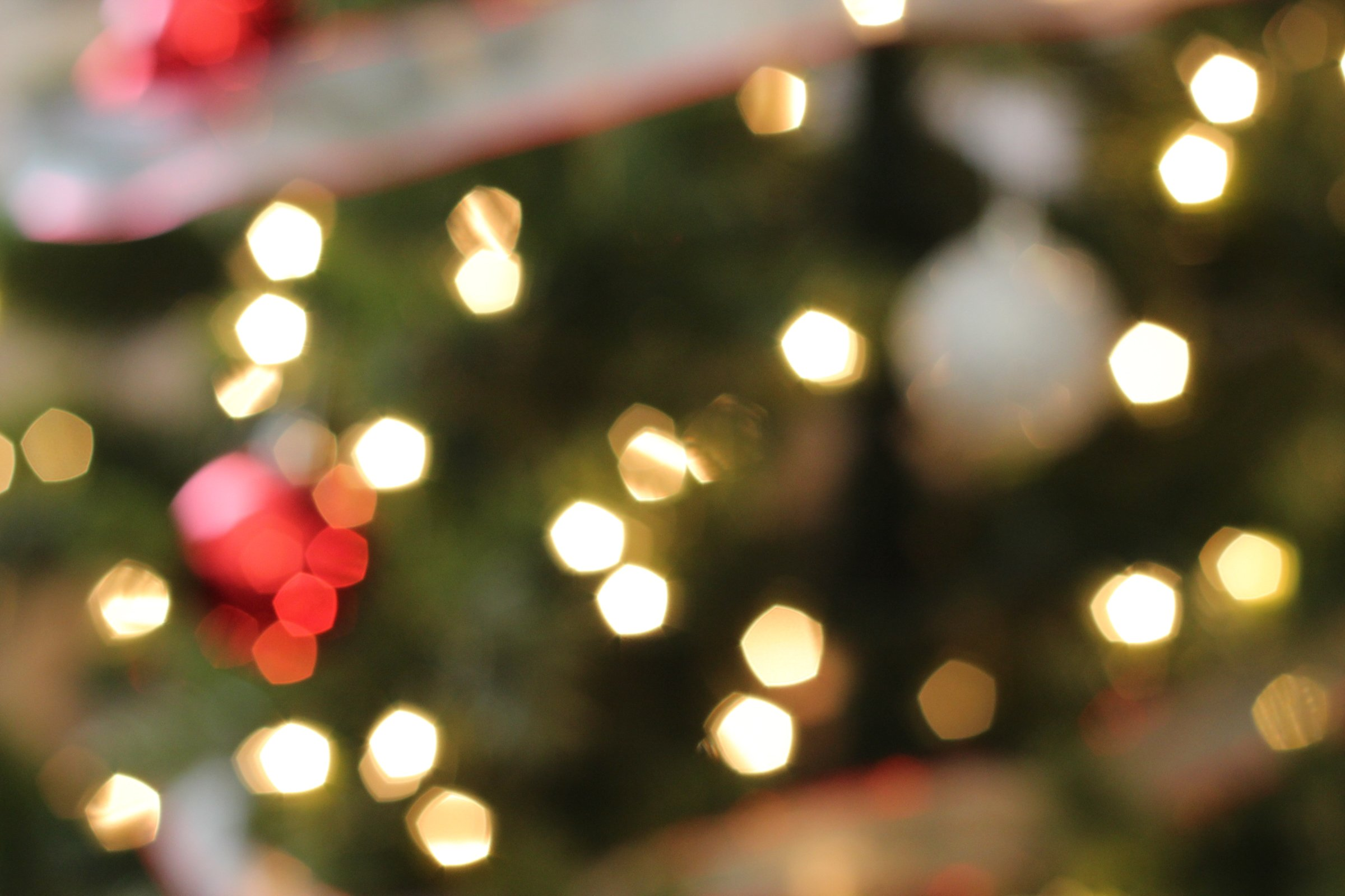 Free stock photo of bokeh of christmas tree lights amp ornaments