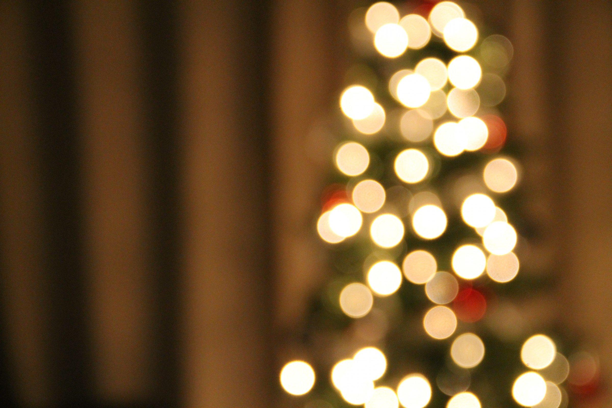 christmas tree lights bokeh