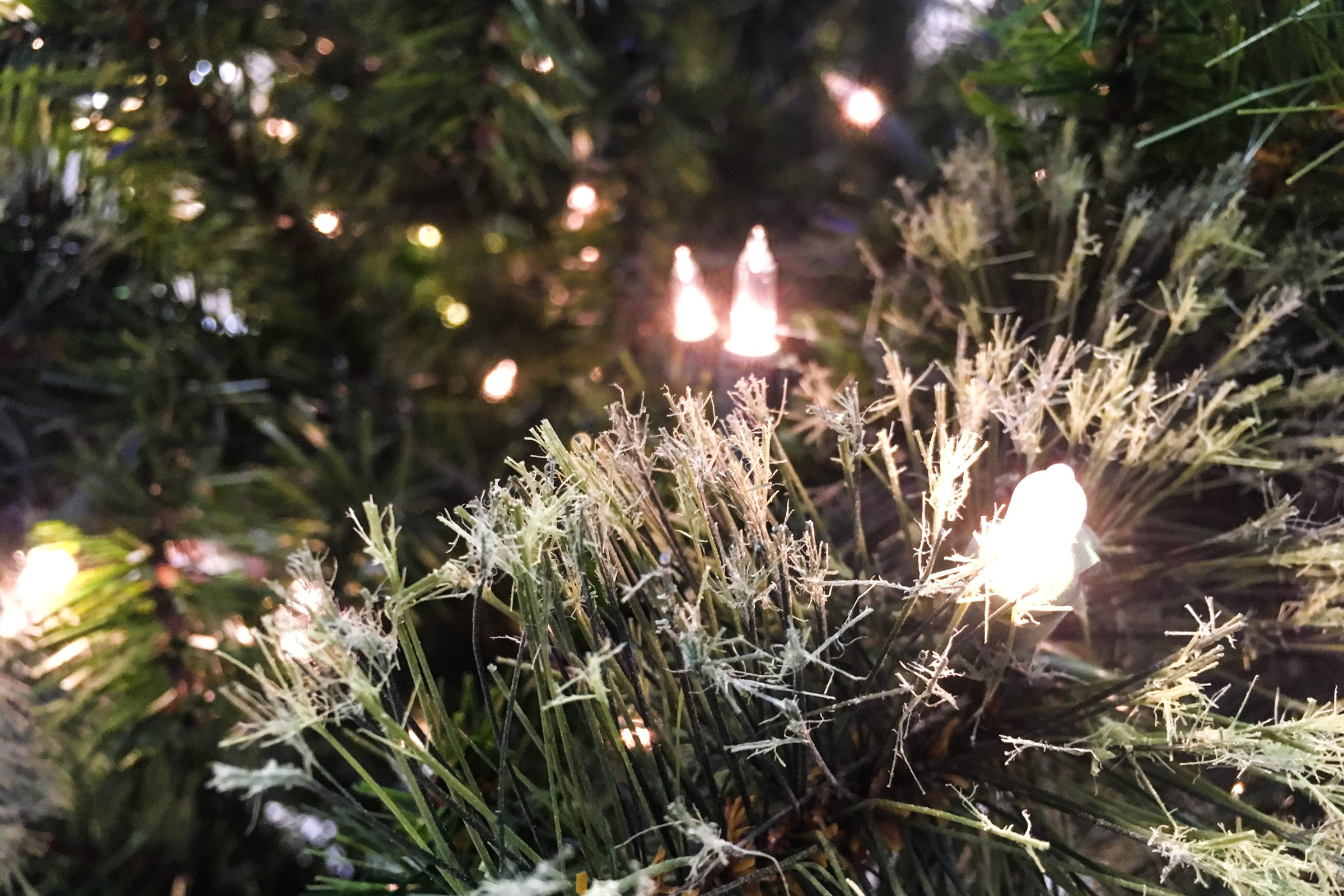 Close Up Of White Lights In Christmas Tree