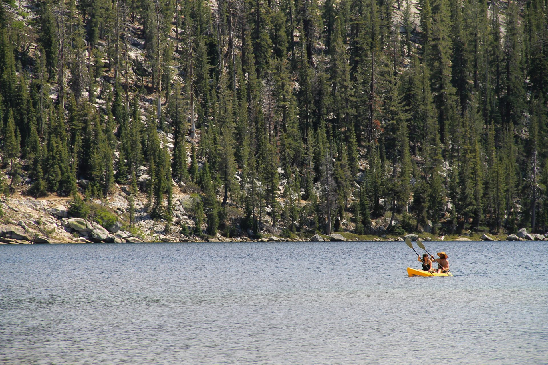 Couple Kayaking on a Lake by Forest