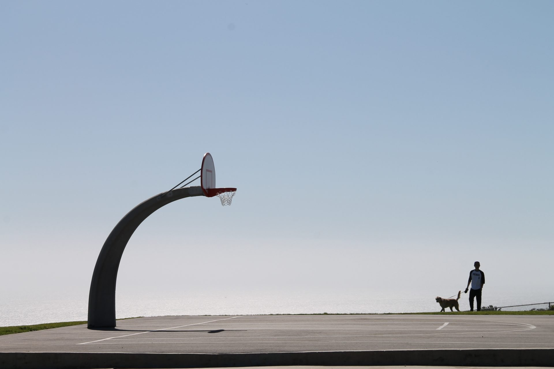 Curved Basketball Hoop & Man With Dog