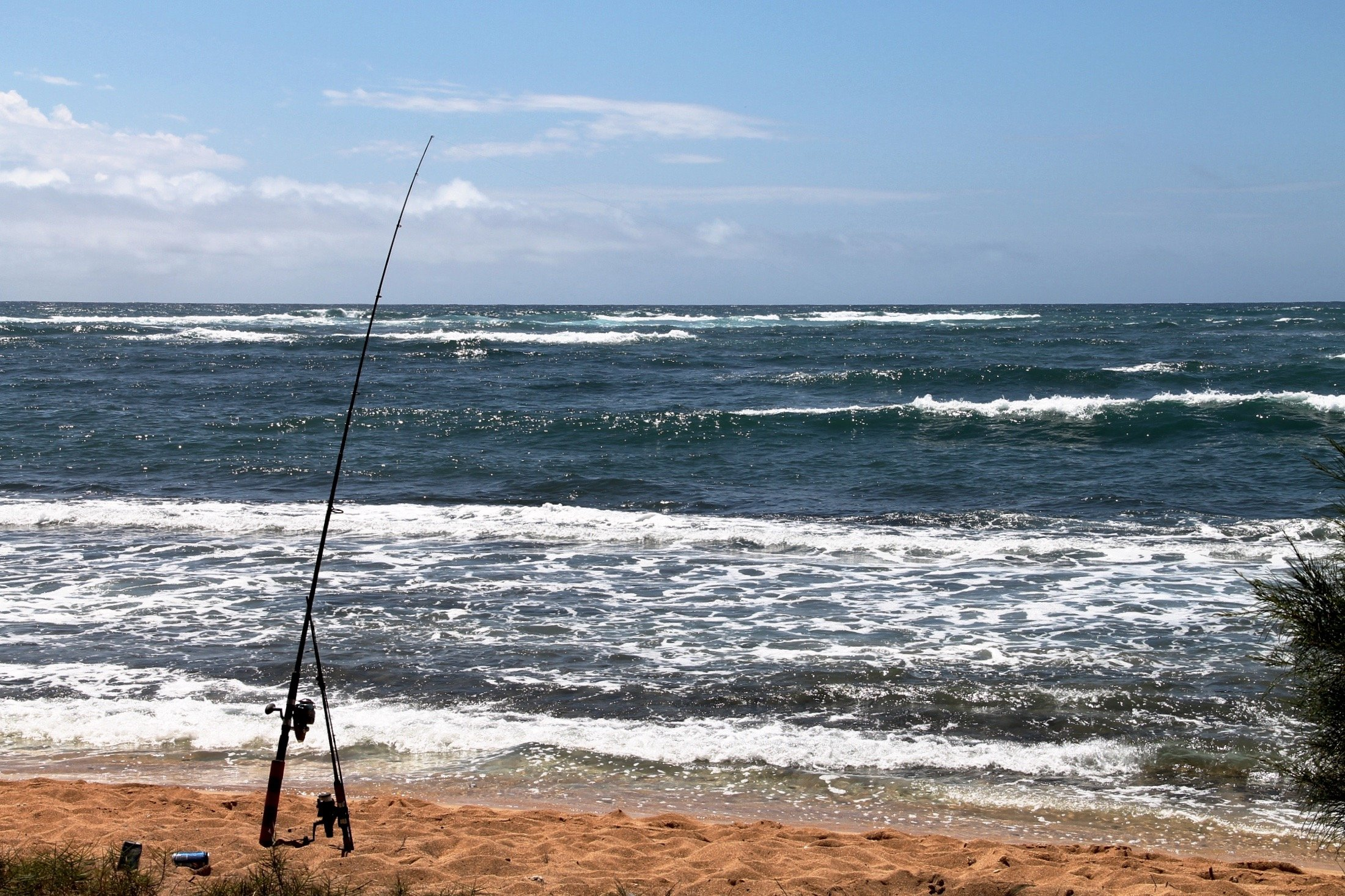 Fishing Pole on Beach at Ocean