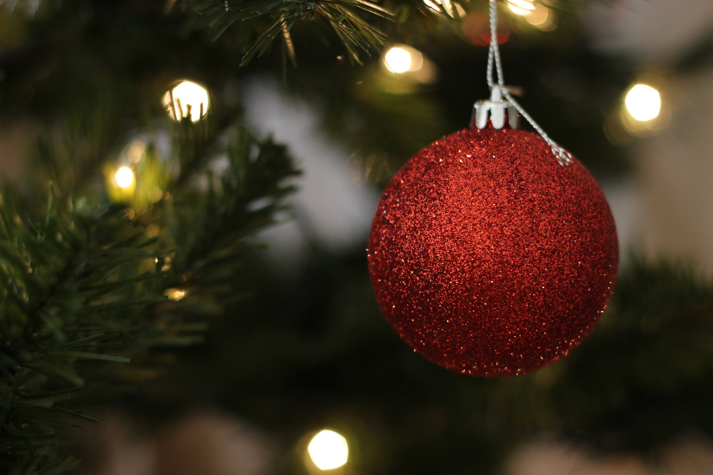Free Stock Photo Of Red Ball Ornament Hanging On Christmas Tree