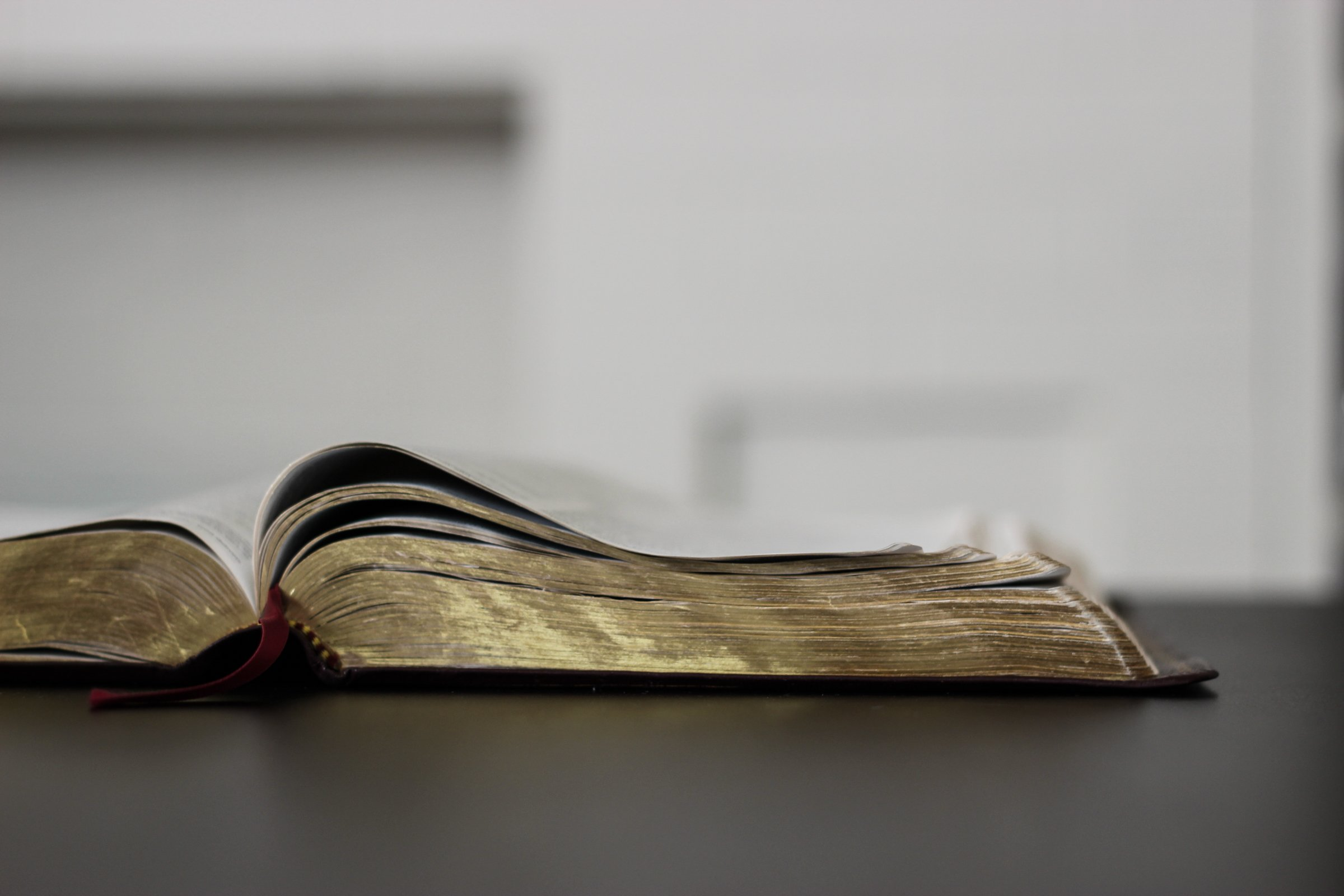 free stock photo of open bible on dark table