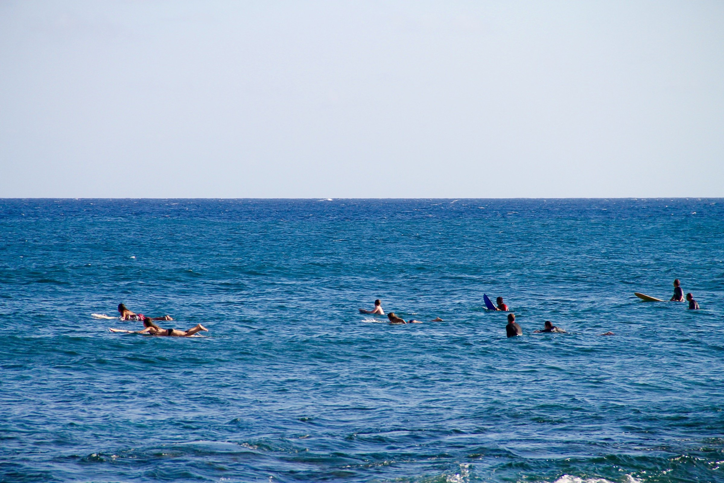 free stock photo of people on surf boards paddling in ocean