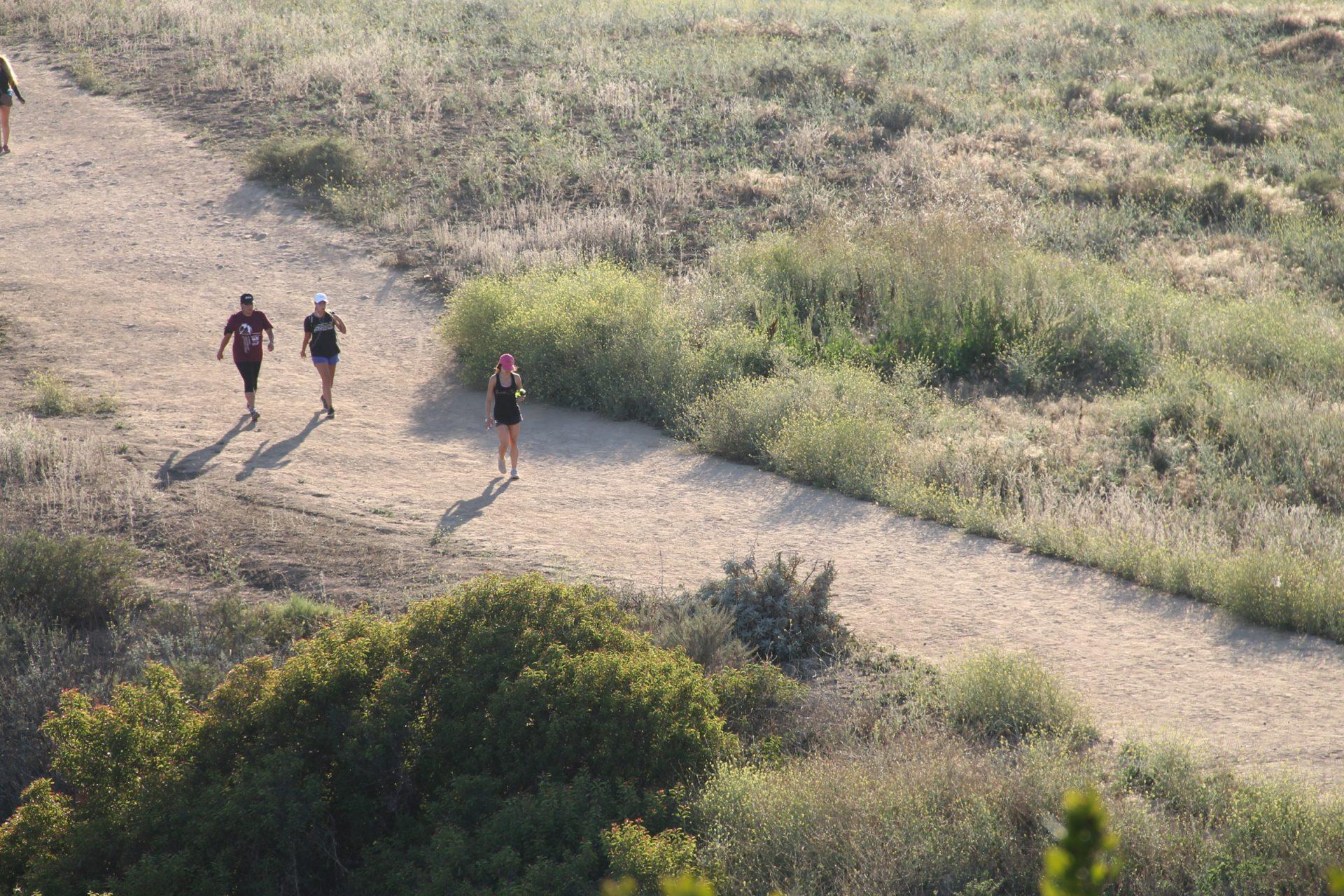People Walking on Dirt Trail