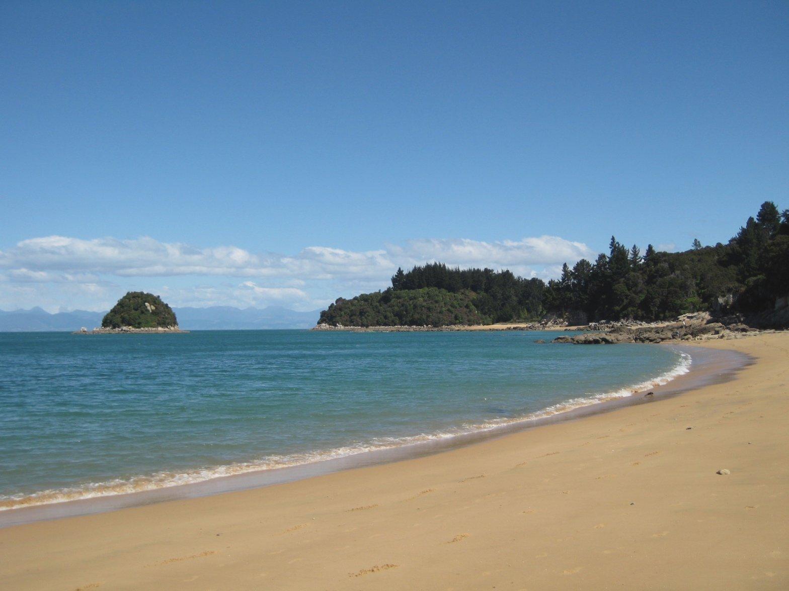 Sandy Beach with Trees
